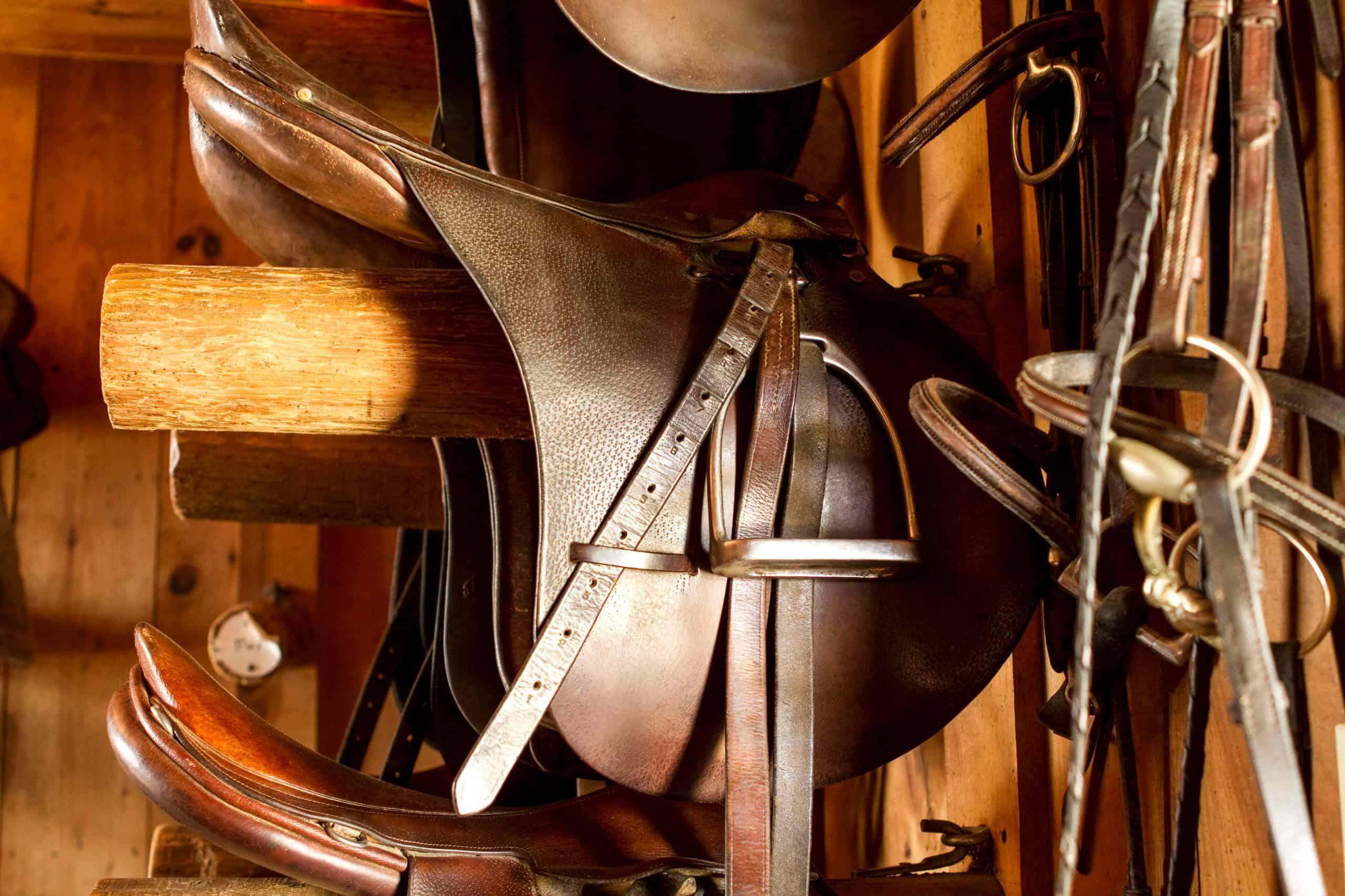 saddle care and maintenance storage