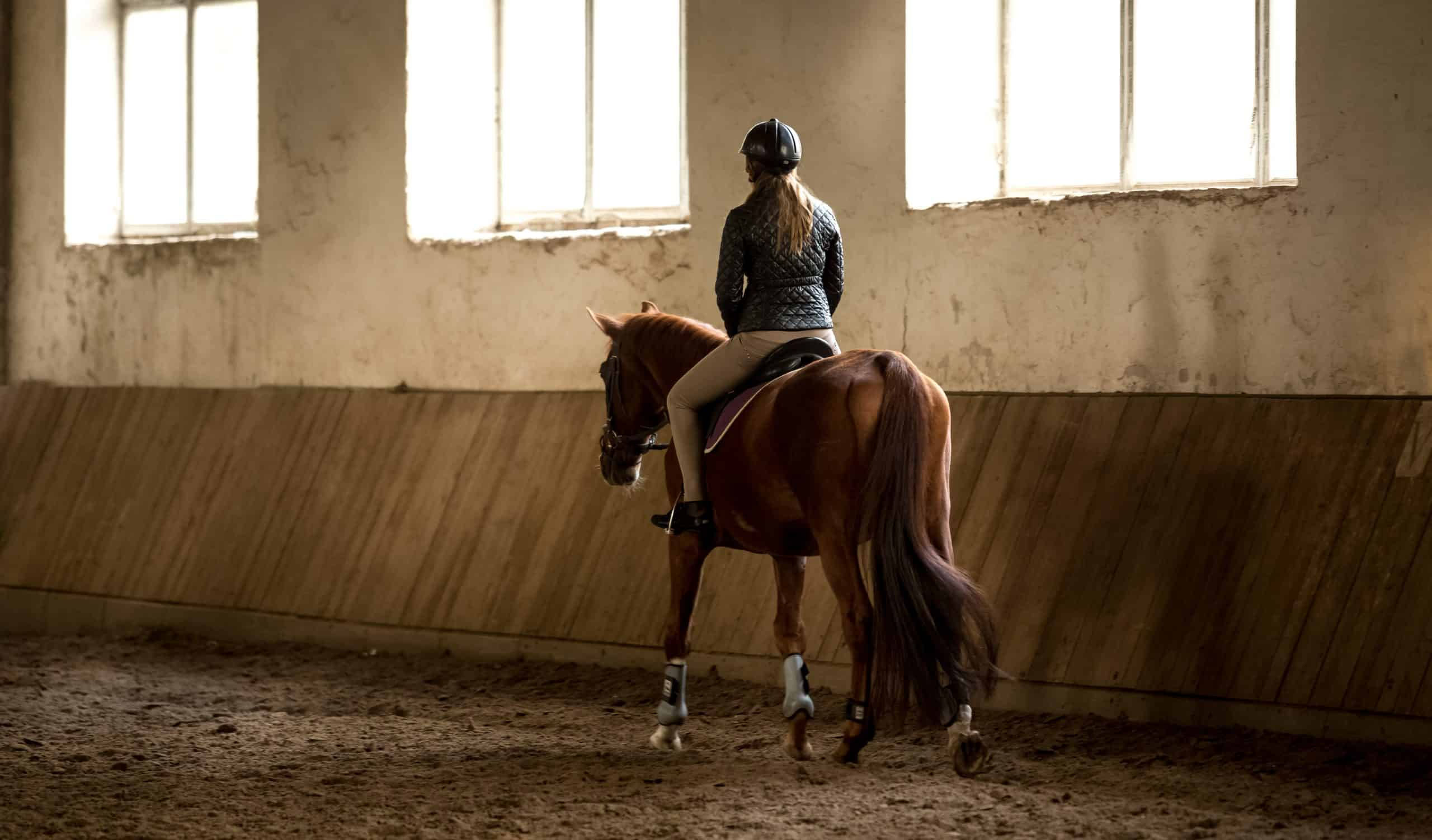 Photo from back of woman doing horseback riding in manege