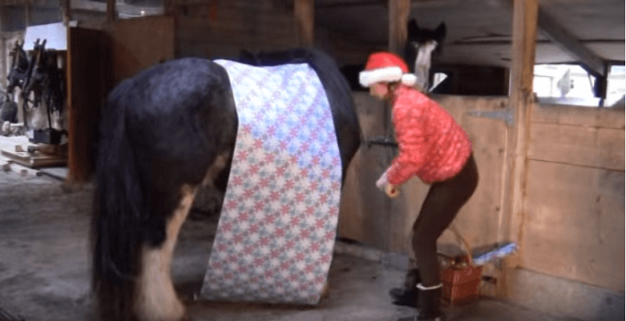 horsewrapping1