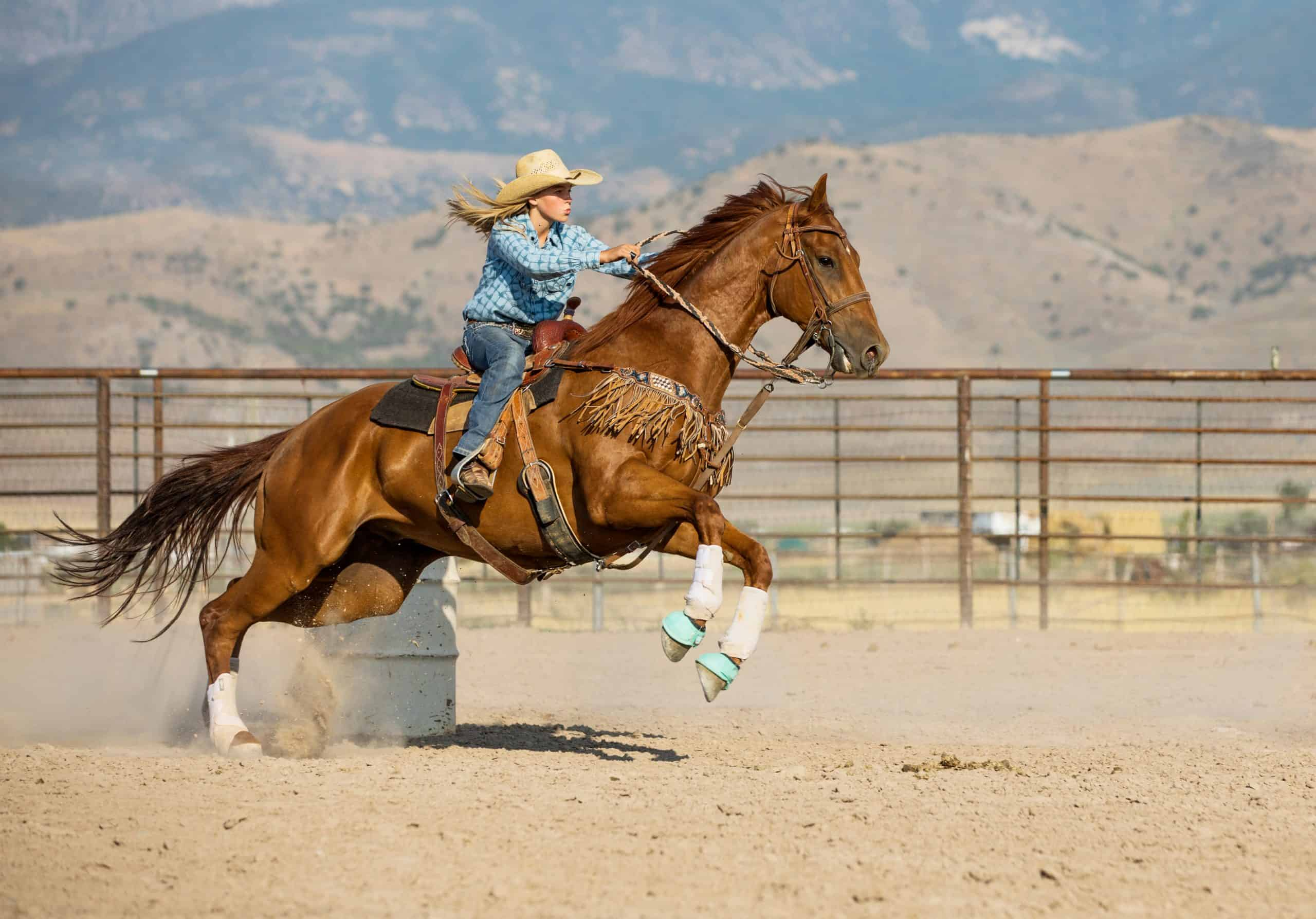 A teenage cowgirl barrel racing with her beautiful horse.