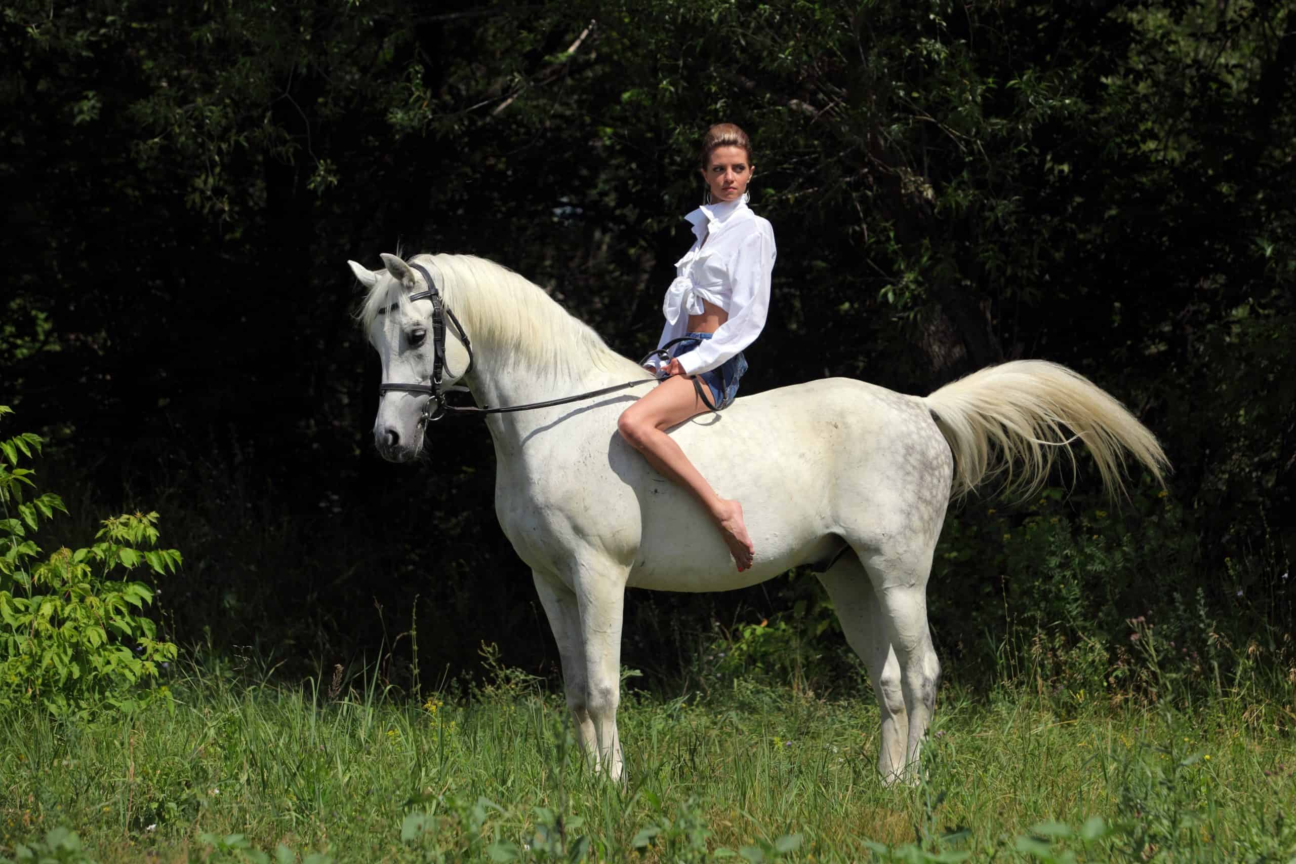 Young attractive equestrian woman horseback riding