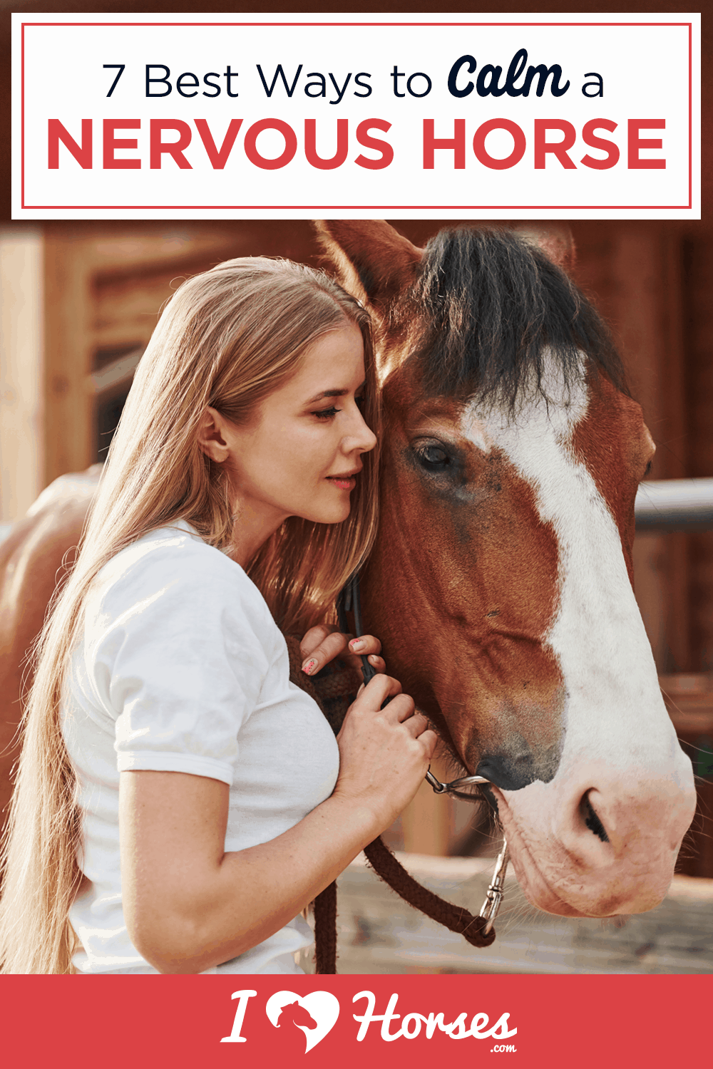 how to calm a nervous horse