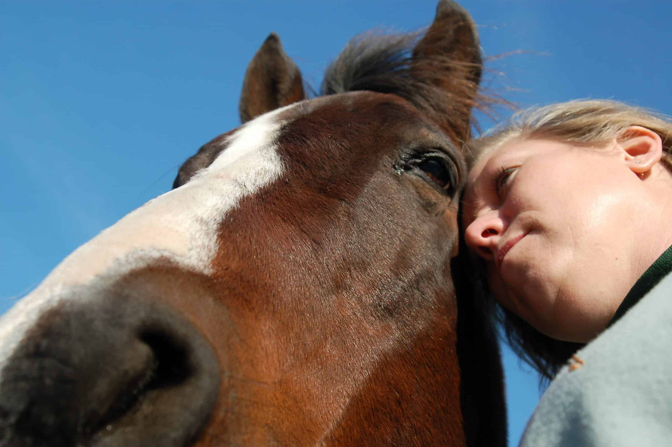 Alternative Therapy Horse and Owner