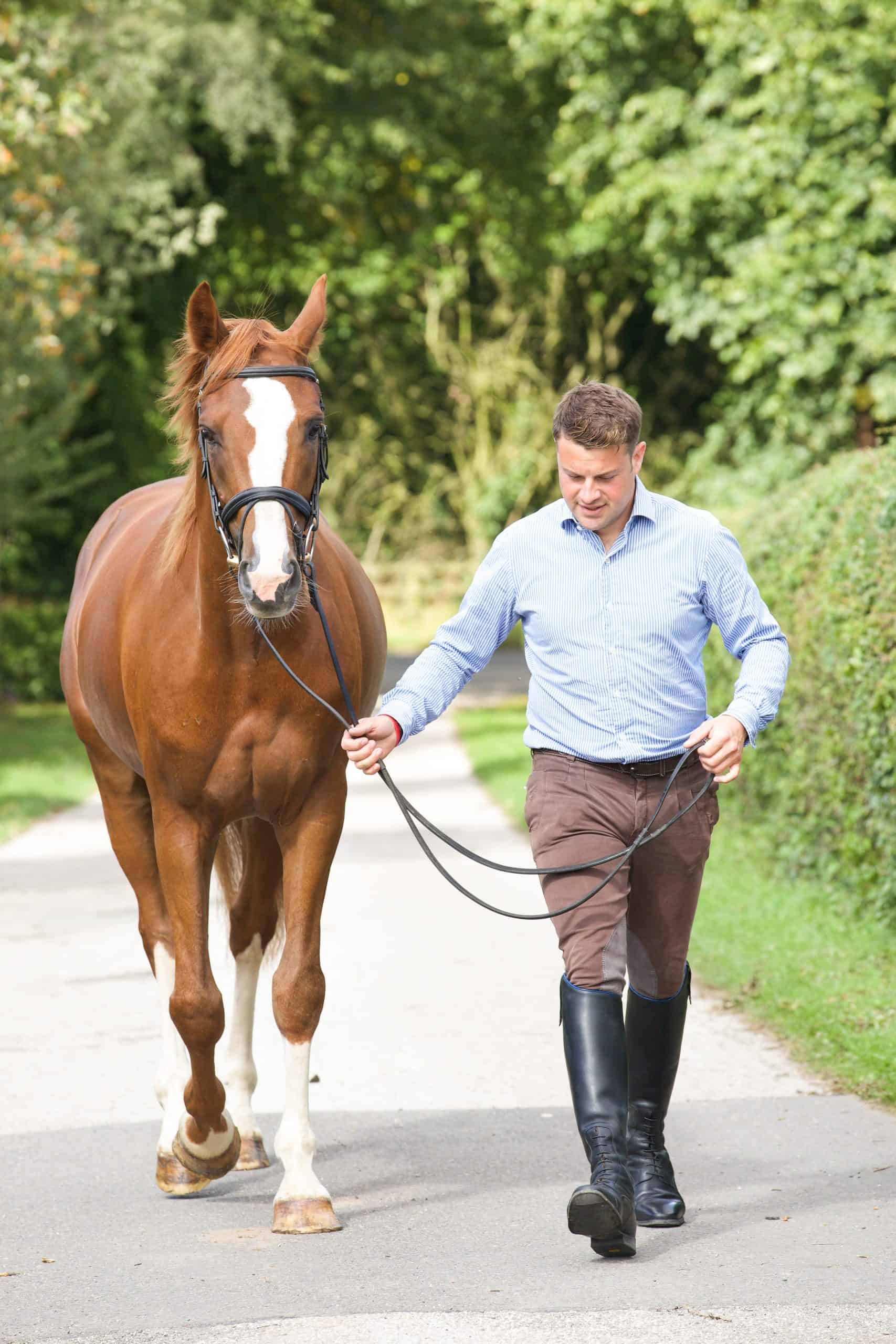 buying a horse for the first time bring your trainer