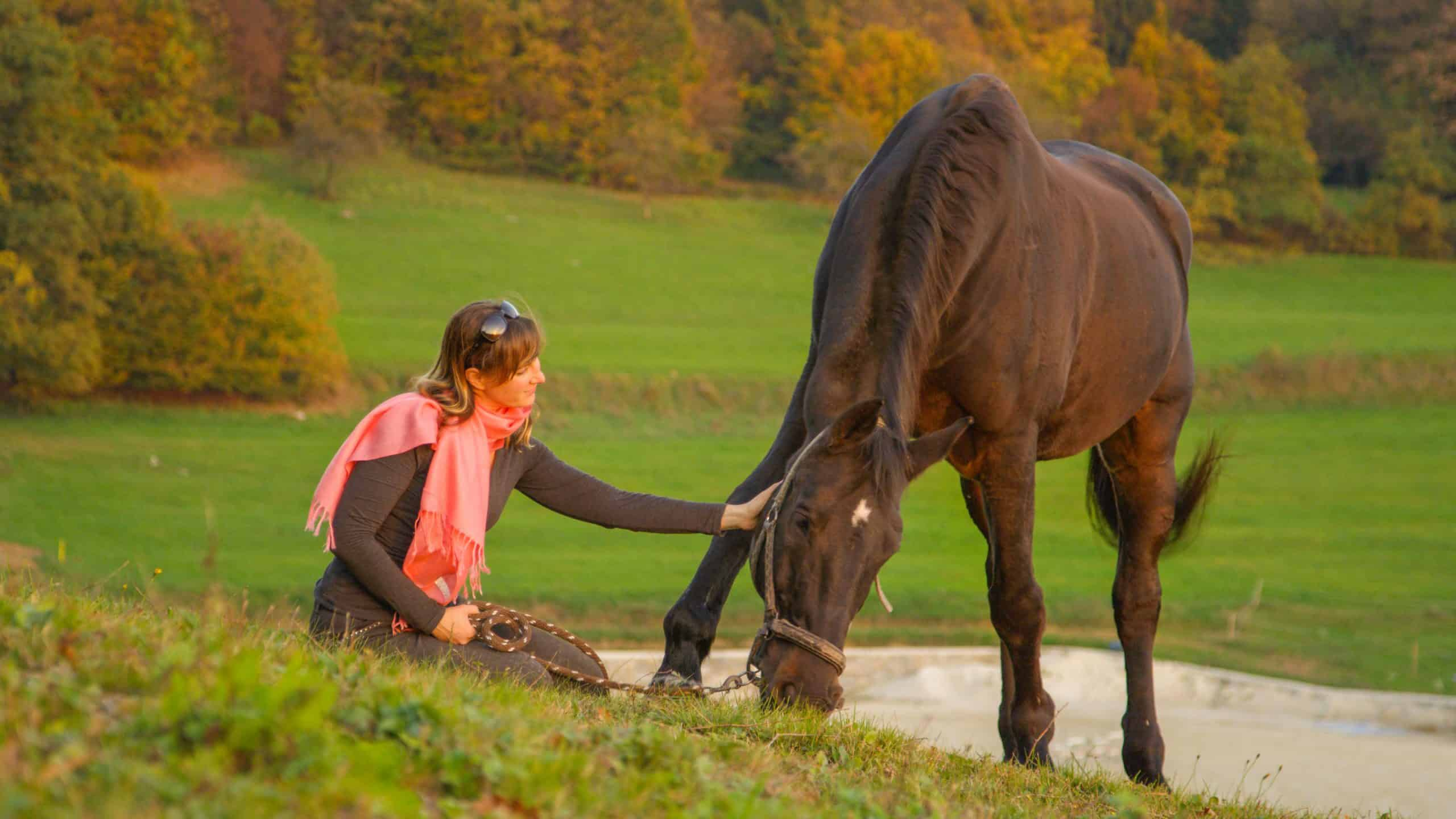 Loving young Caucasian woman pets her beautiful stallion grazing in a remote pasture on a tranquil summer evening. Lovely shot of girl sitting and touching her horse pasturing in calm countryside.