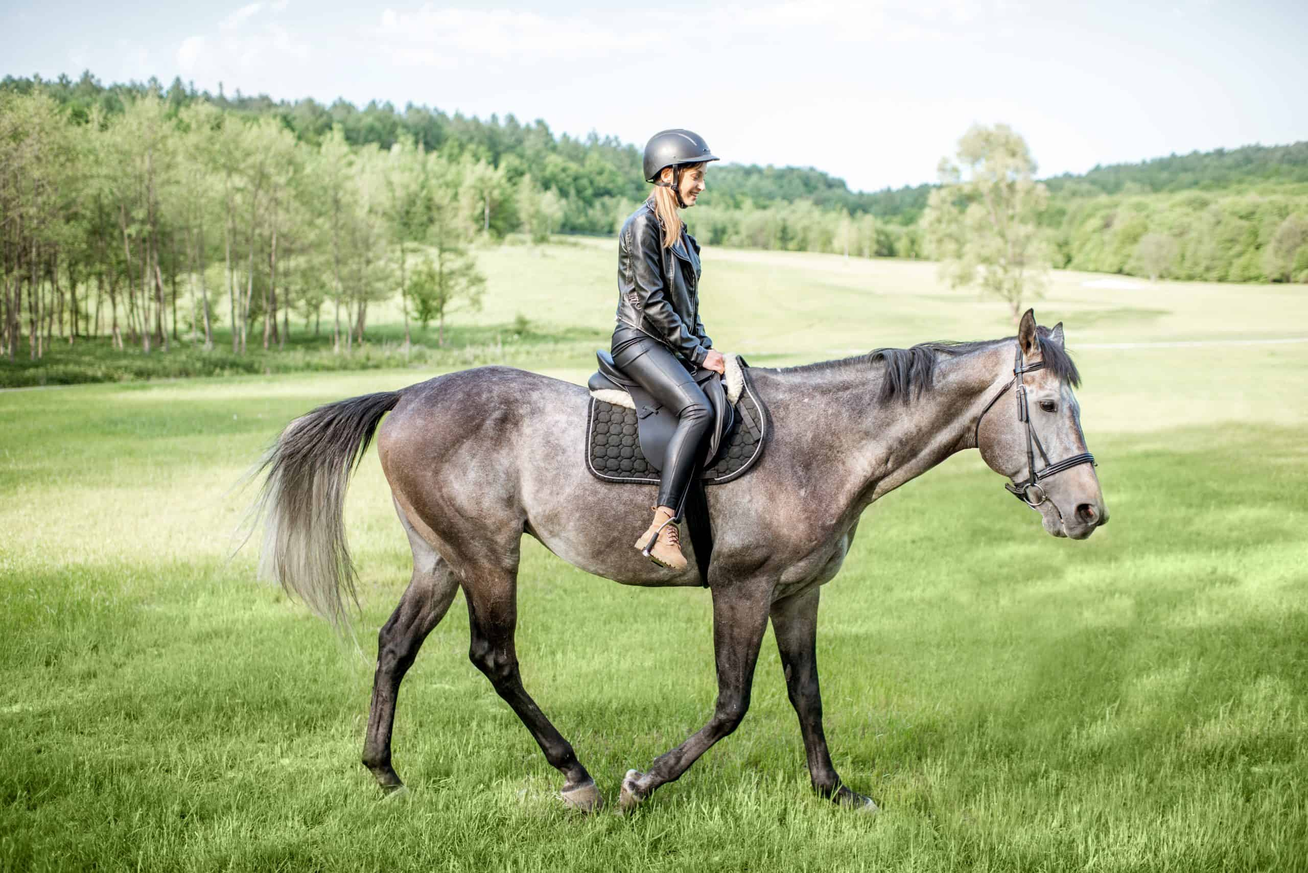 calm a nervous horse Woman in leather jacket with protective helmet riding a horse on the green meadow