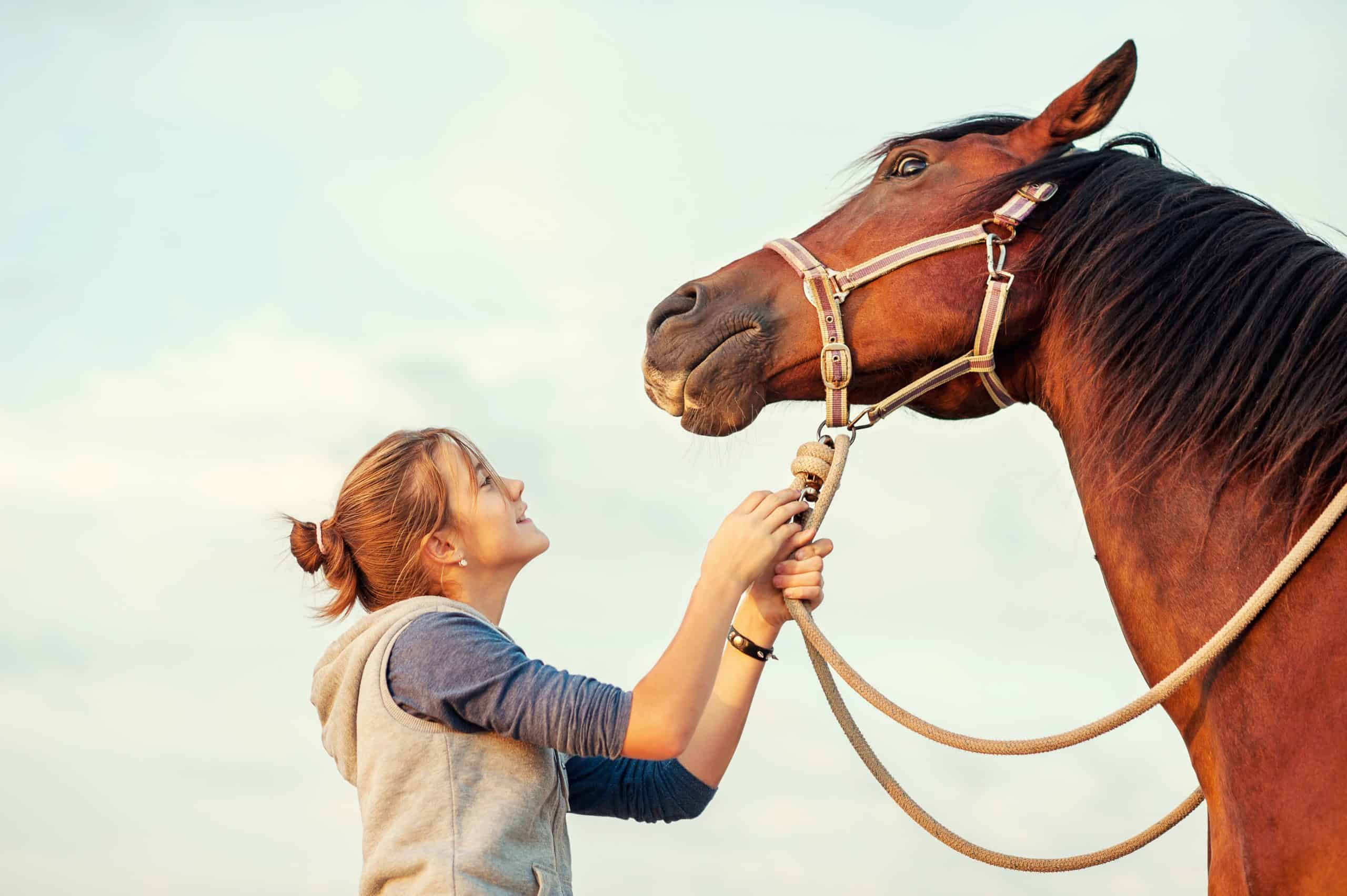 Young cheerful teenage girl calming big spirit chestnut horse. Vibrant multicolored summertime outdoors horizontal image with filter.
