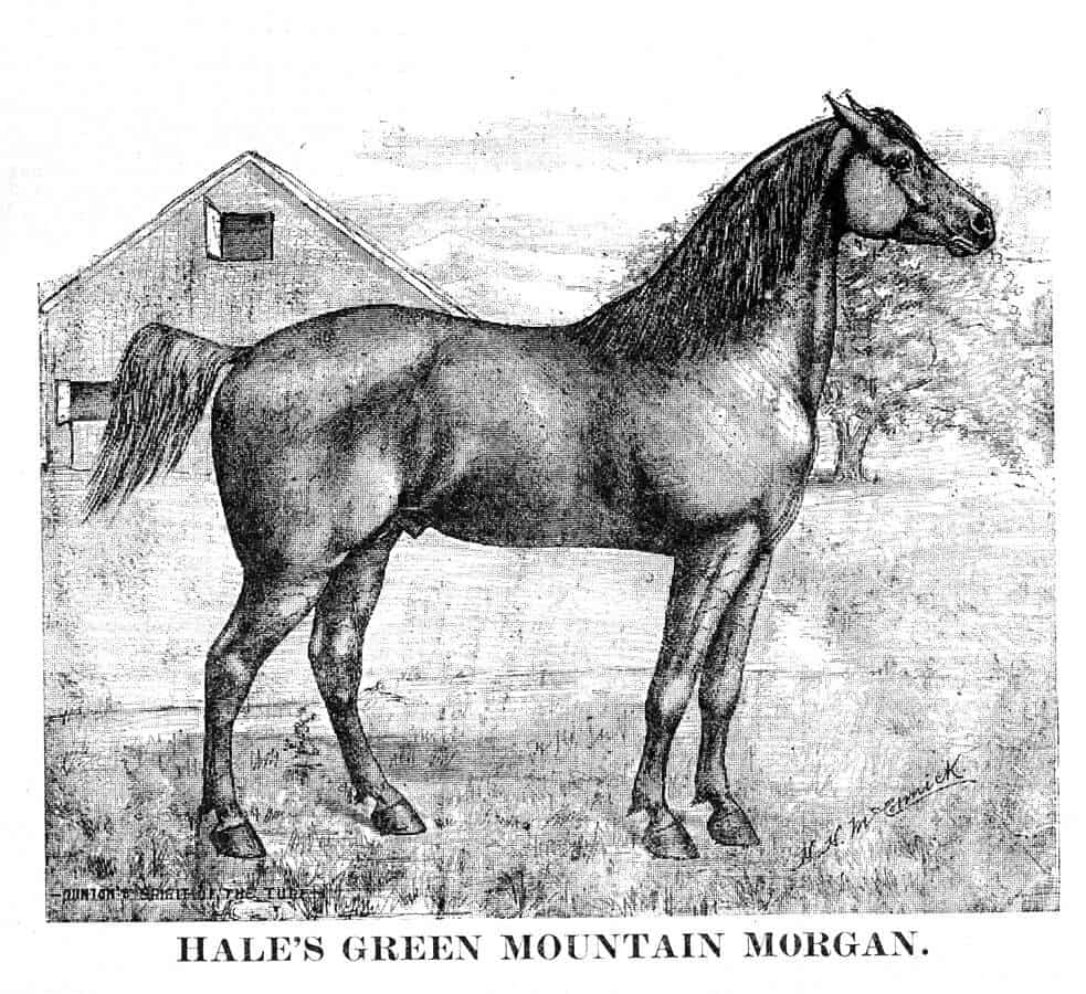 Image source: Dunton's Spirit of the Turf Magazine - Dunton's Spirit of the Turf Magazine, September 15, 1888, Public Domain