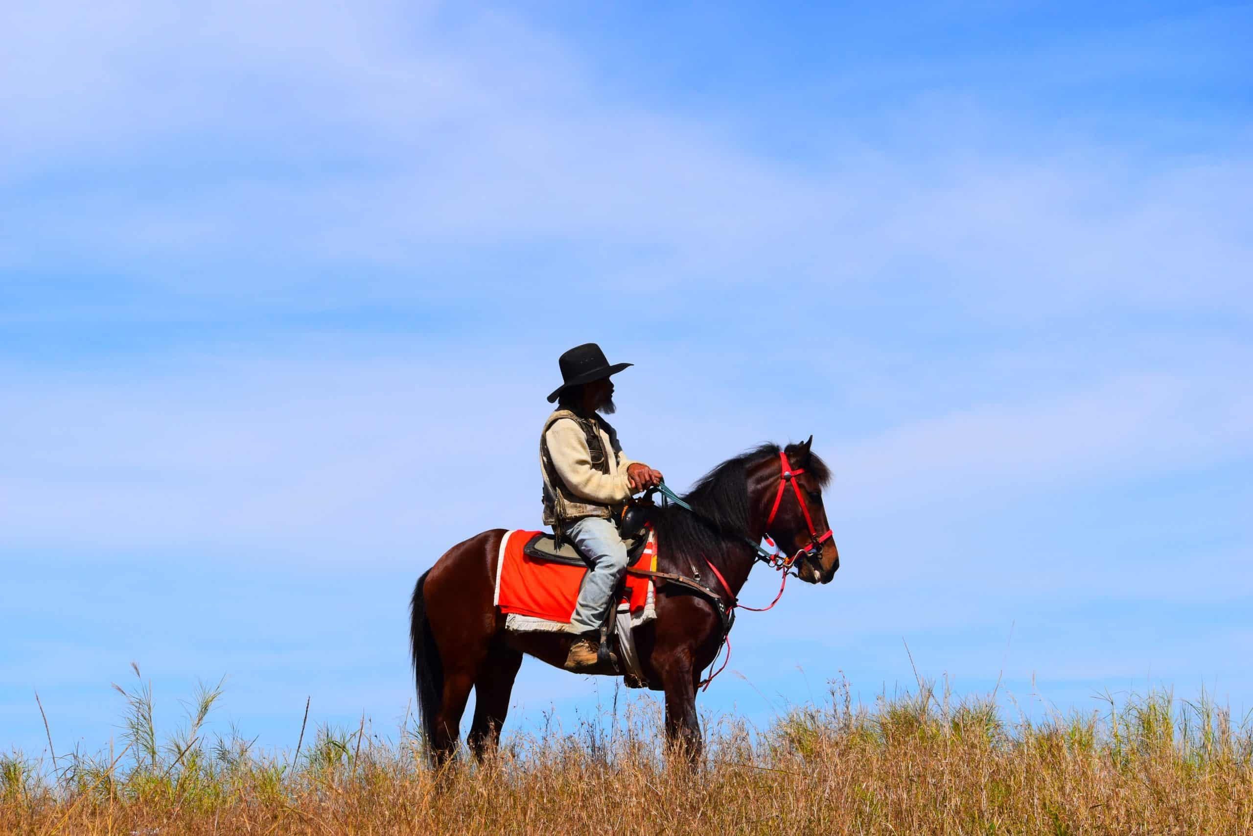 Man Riding On Brown Horse (1)