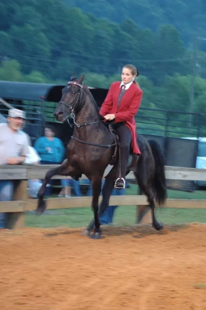 Image source: DanDee Shots - Milton Horse Show wikimedia