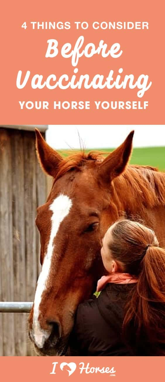 vaccinate your horse