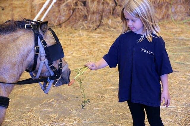 Image source: State Farm via Flickr.com