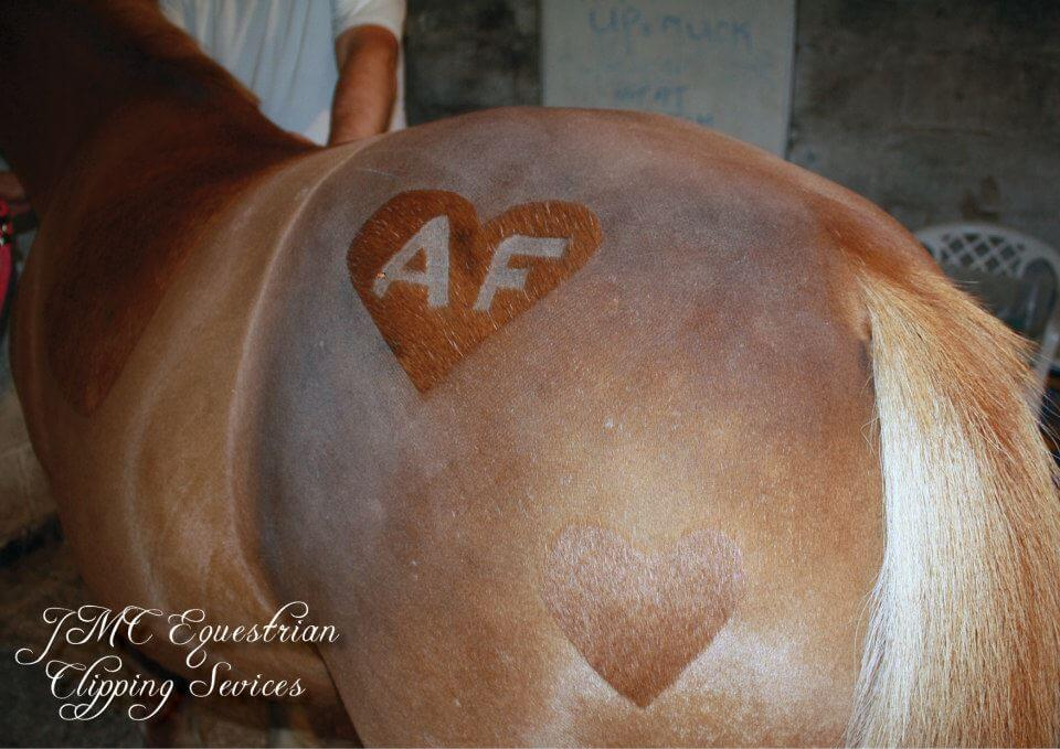 Image source: Melody Harmes / JMC Equestrian Custom Clipping
