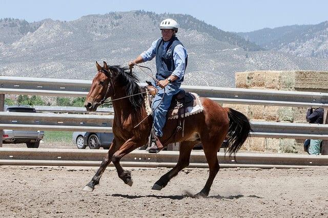 Image source: BLM Nevada via Flickr.com