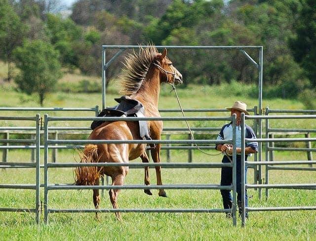 Image source: Cowboy Dave via Flickr.com
