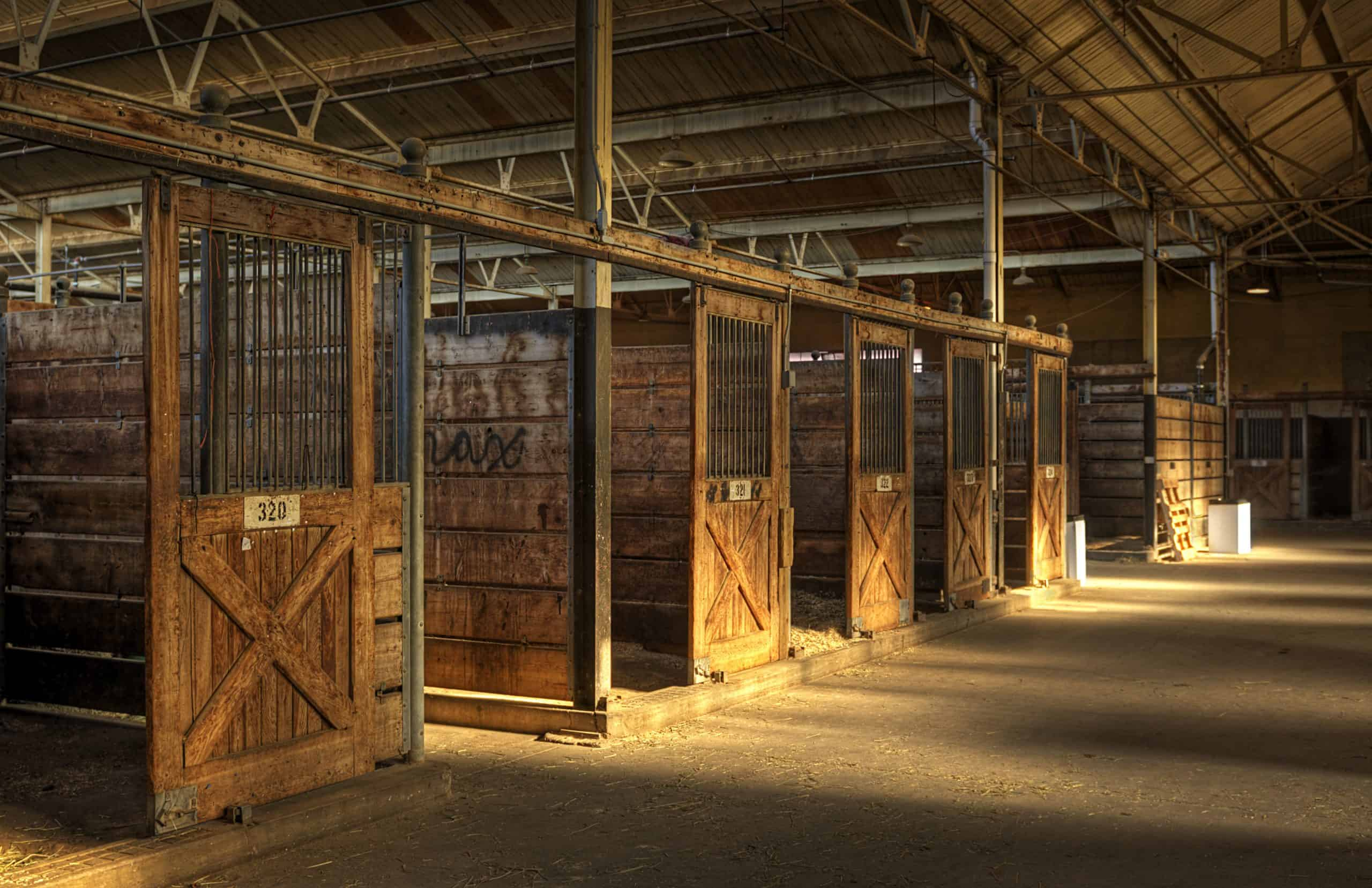 Empty Horse Barn - empty wooden stalls and light rays