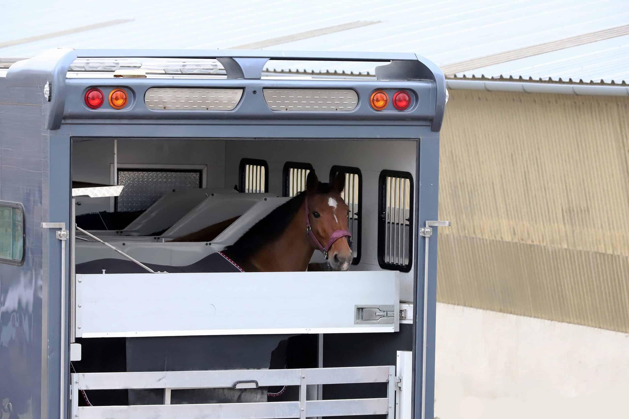 Trailer parking for horse transportation
