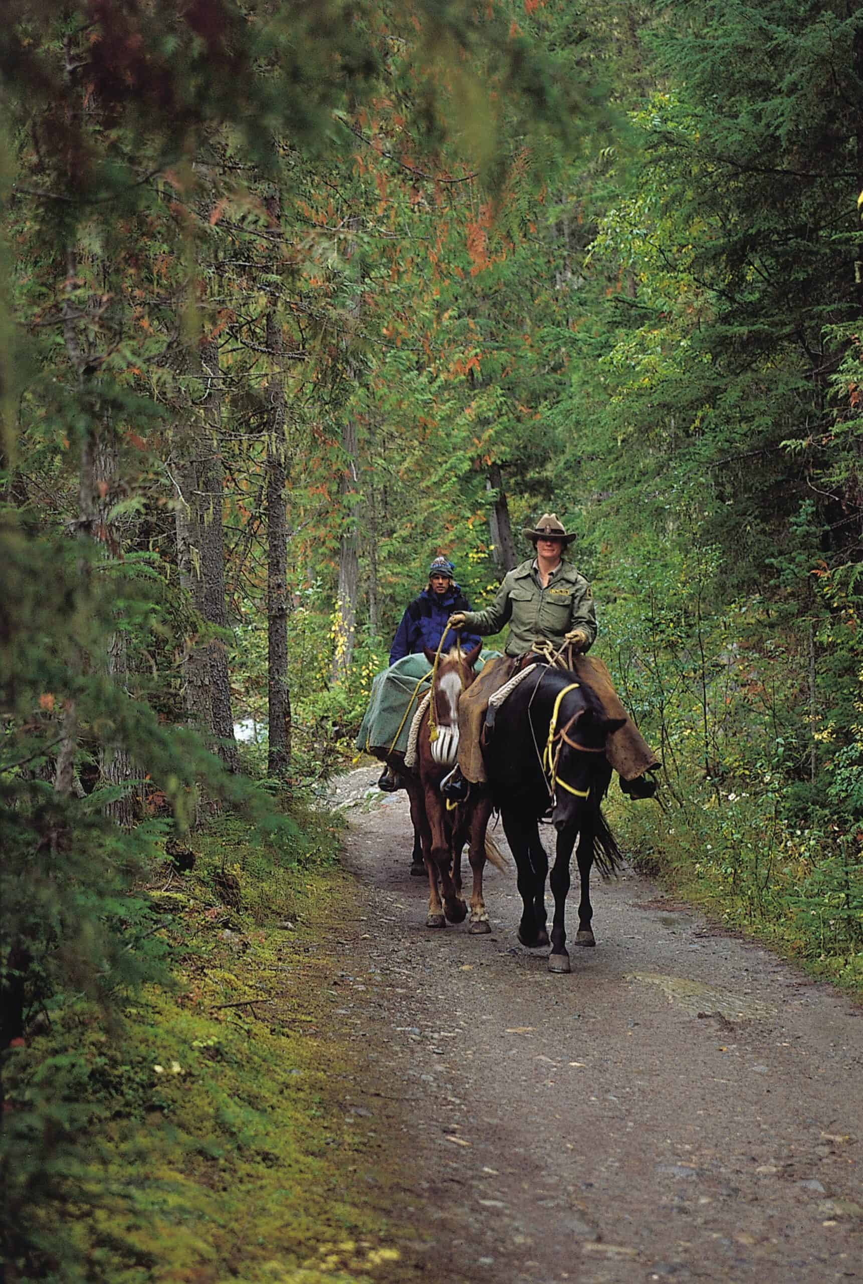 how to build a horses confidence on the trail