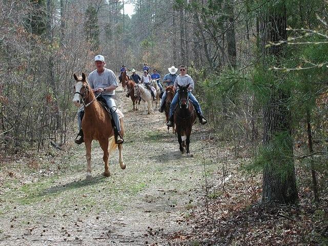 Image Source: Virginia State Parks via Flickr