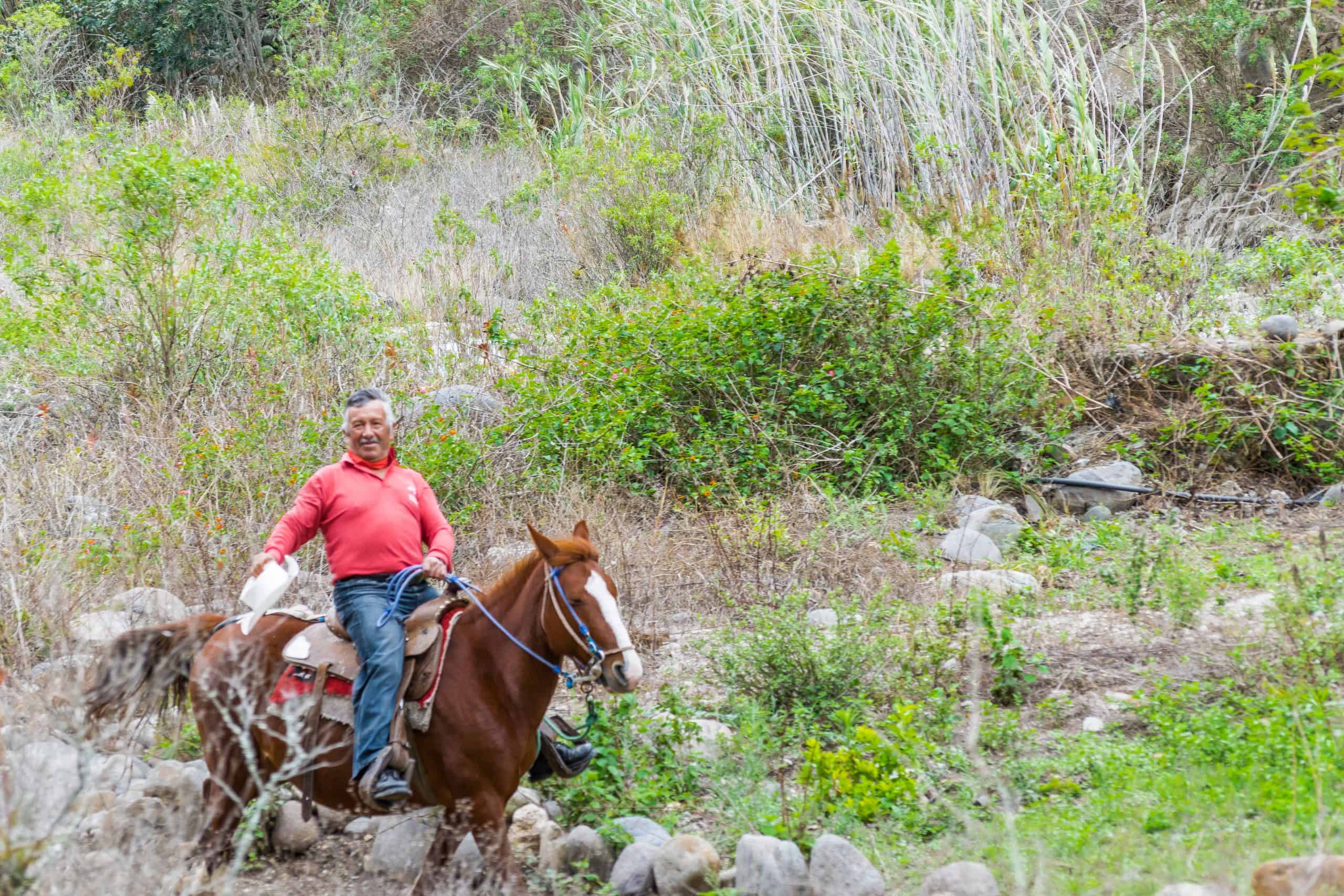 ALAUSI, ECUADOR, OCTOBER - 2015 - Latin cowbow riding a horse at nature landscape in the road of devil nose tour, Aluasi, Ecuador