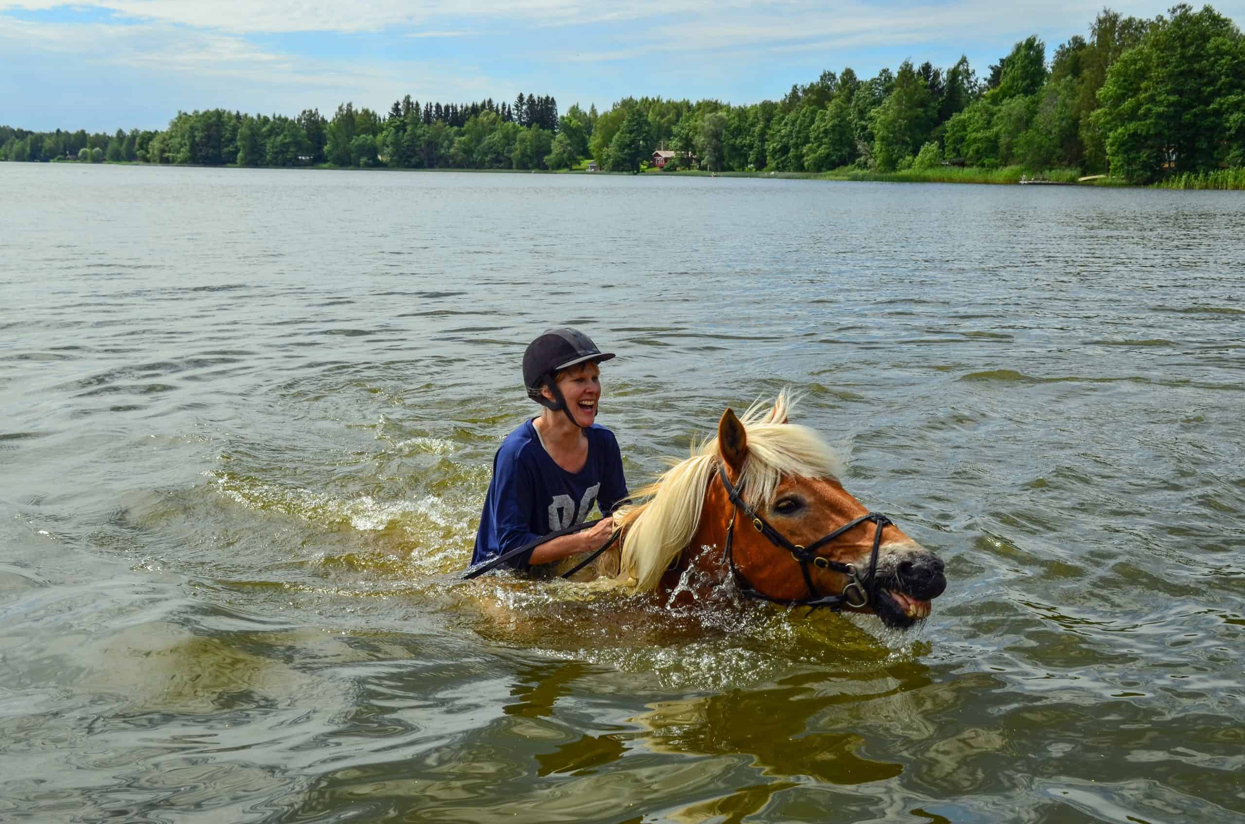 Horse swimming with woman rider