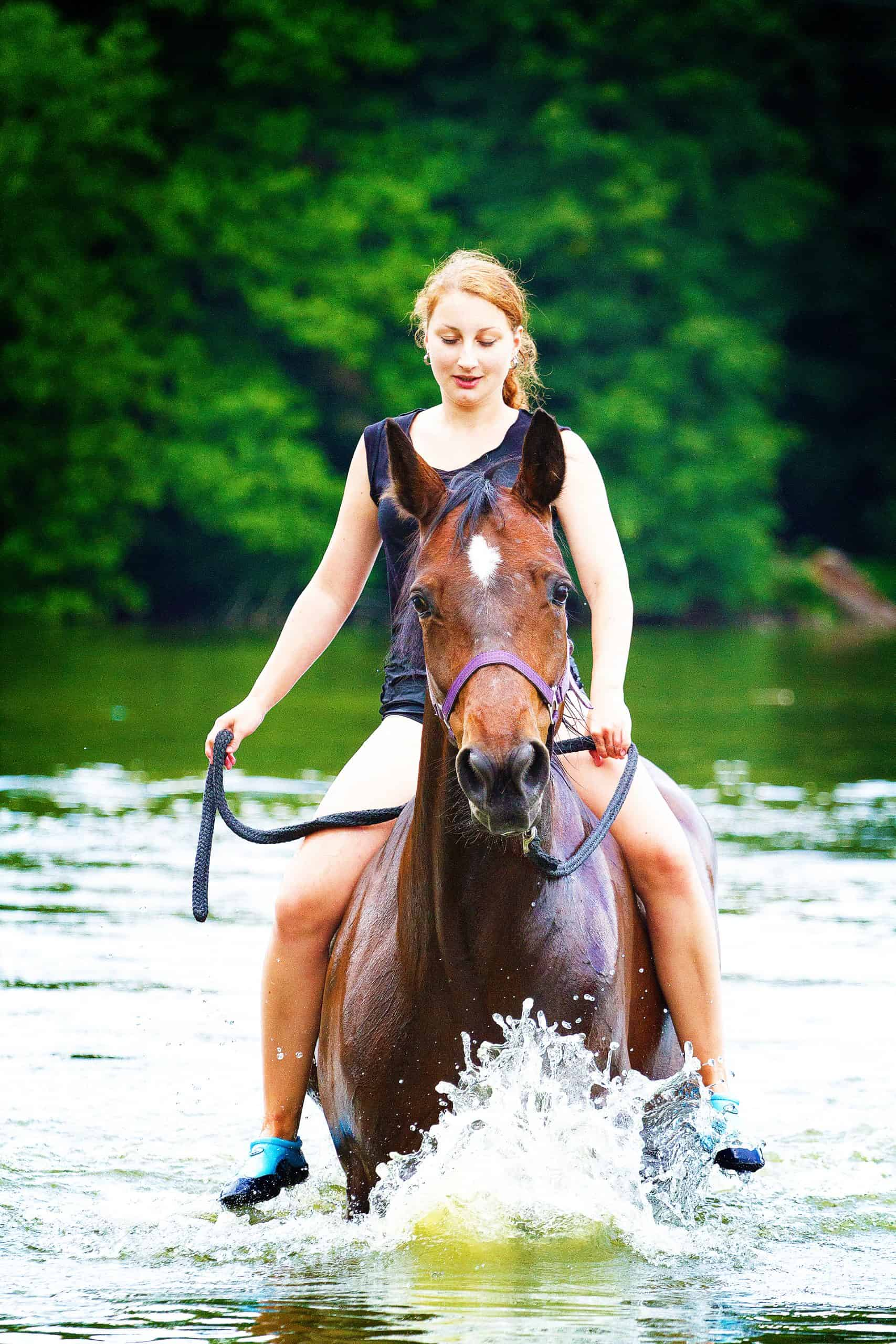 beautiful woman and horse swims
