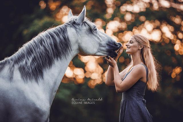 horse-10