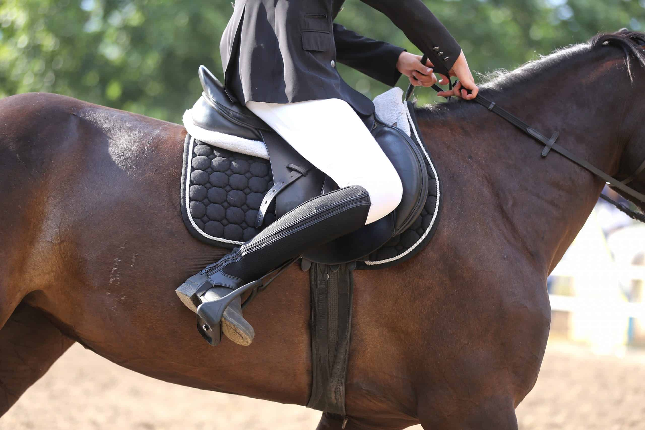 Beautiful handmade dressage horse riding saddle with girth, stirrup on saddle pad on the racetrack