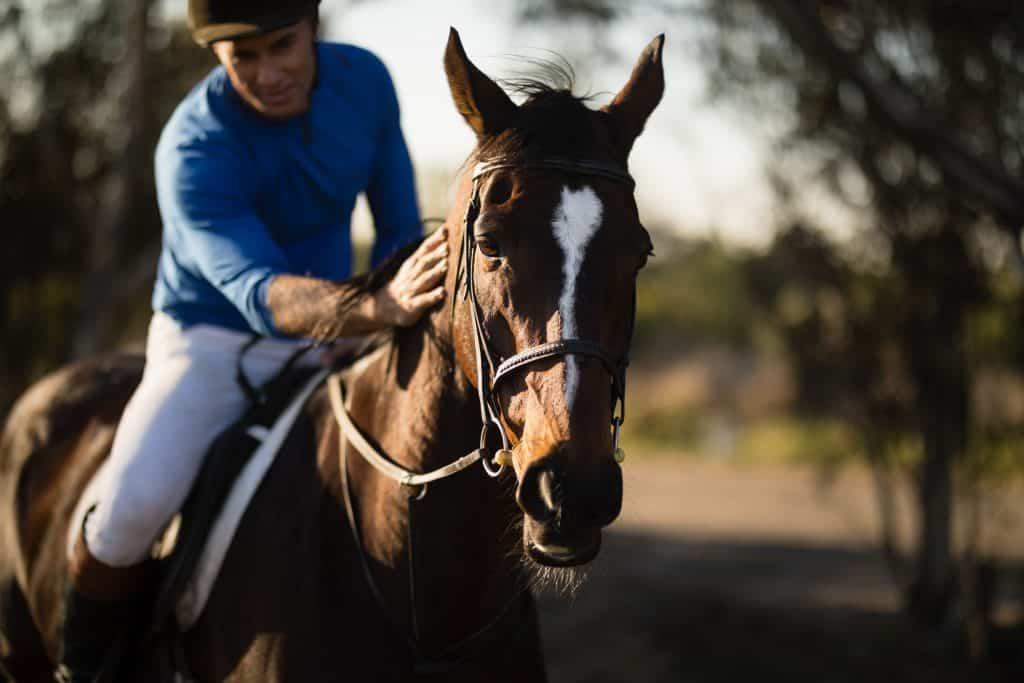 Jockey riding horse at barn