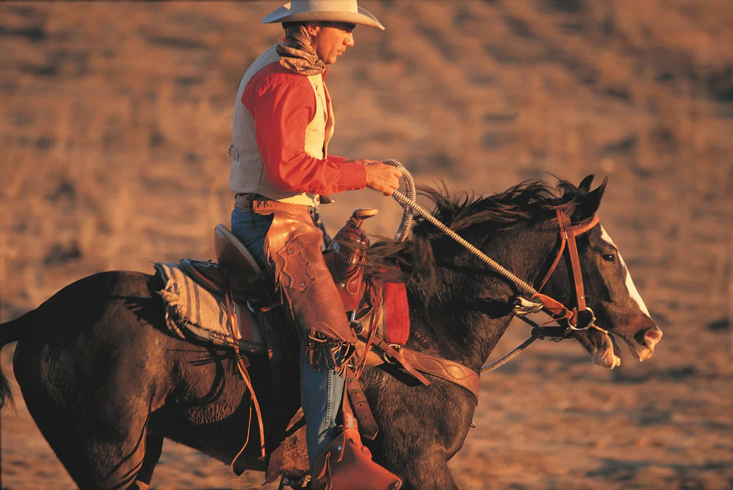 horseback reining