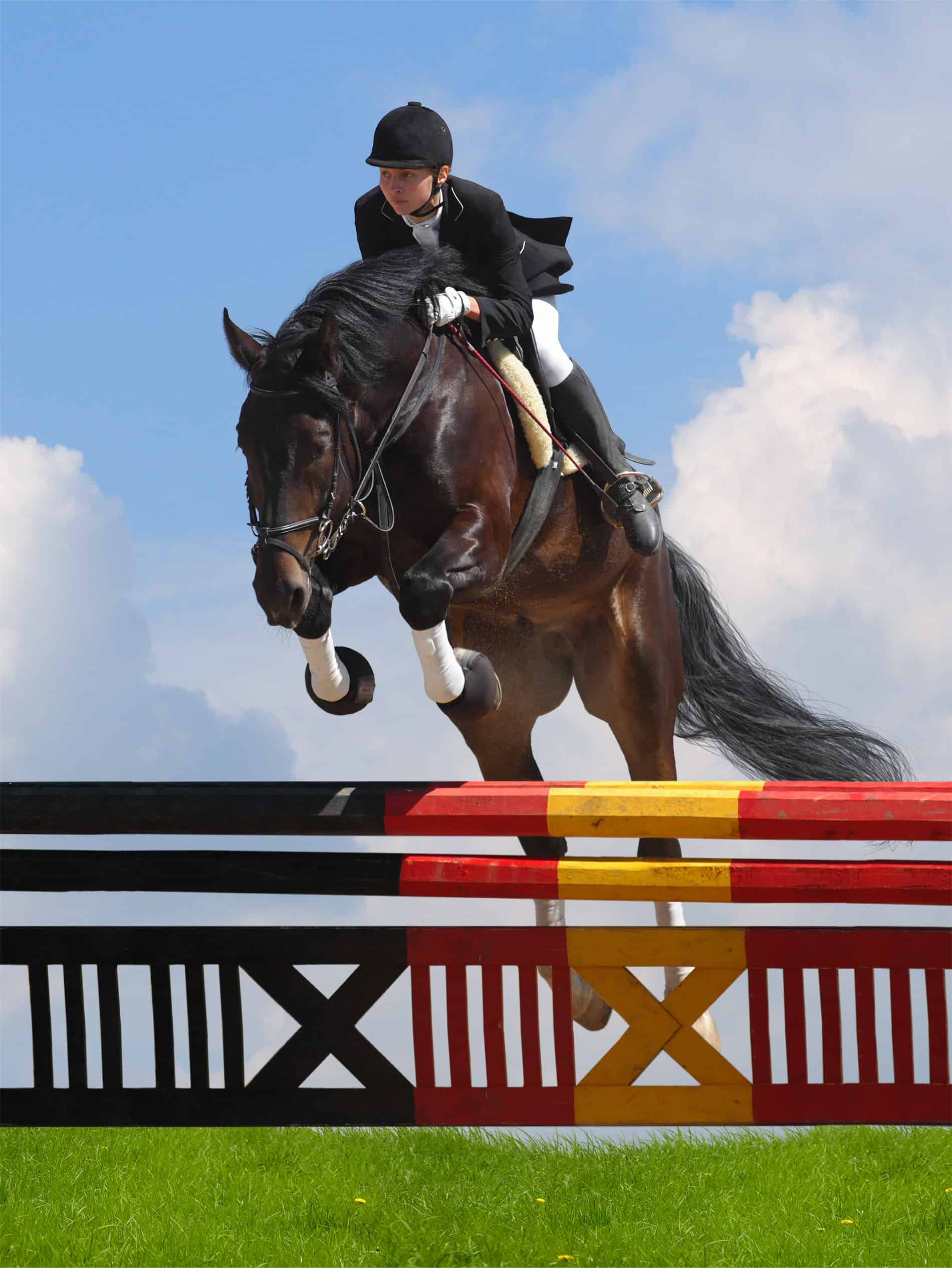 show jumping - woman and horse horseback riding styles