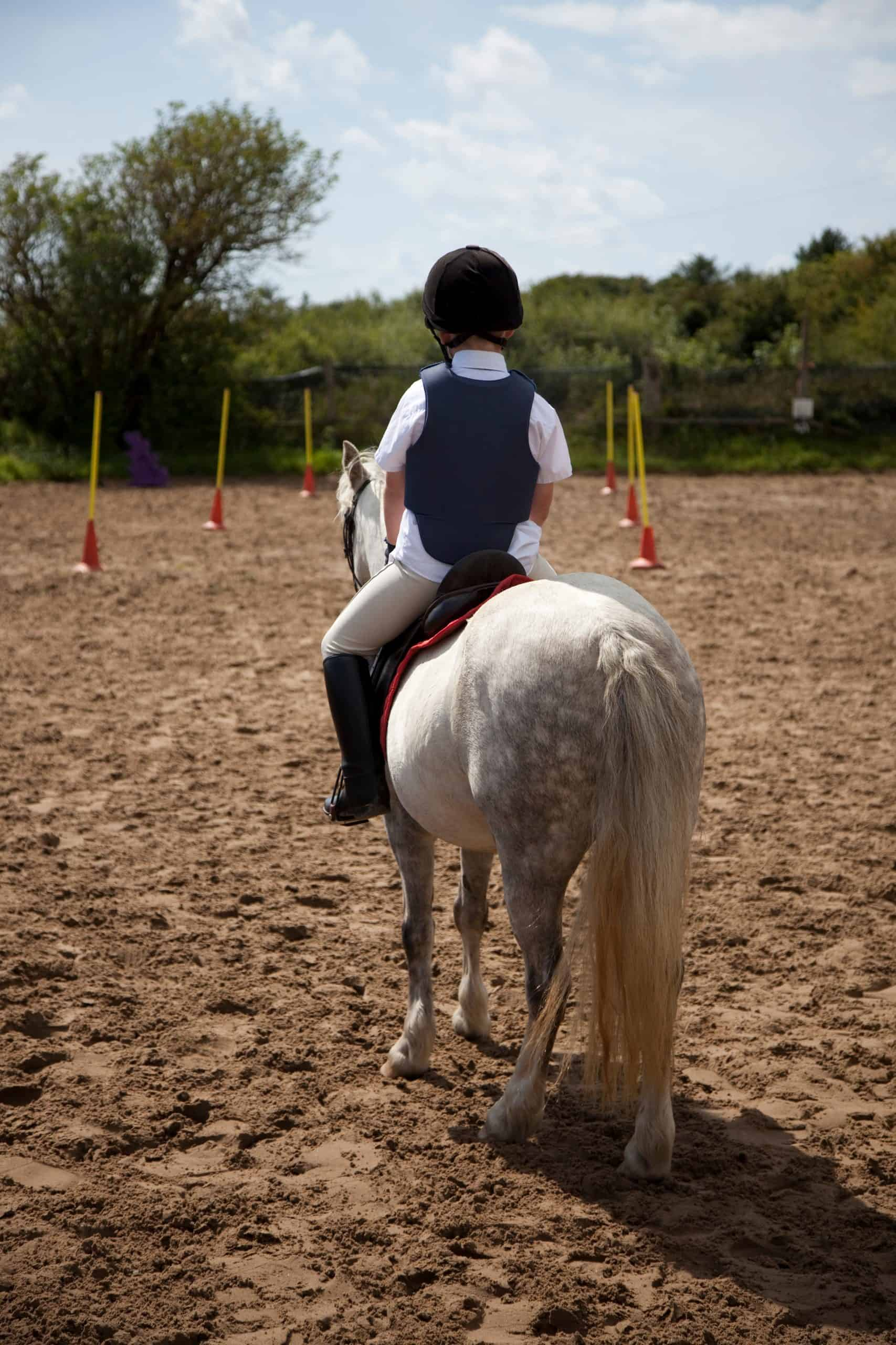 young rider appraising gymkhana course
