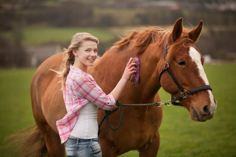 Teenage girl brushing horse in field