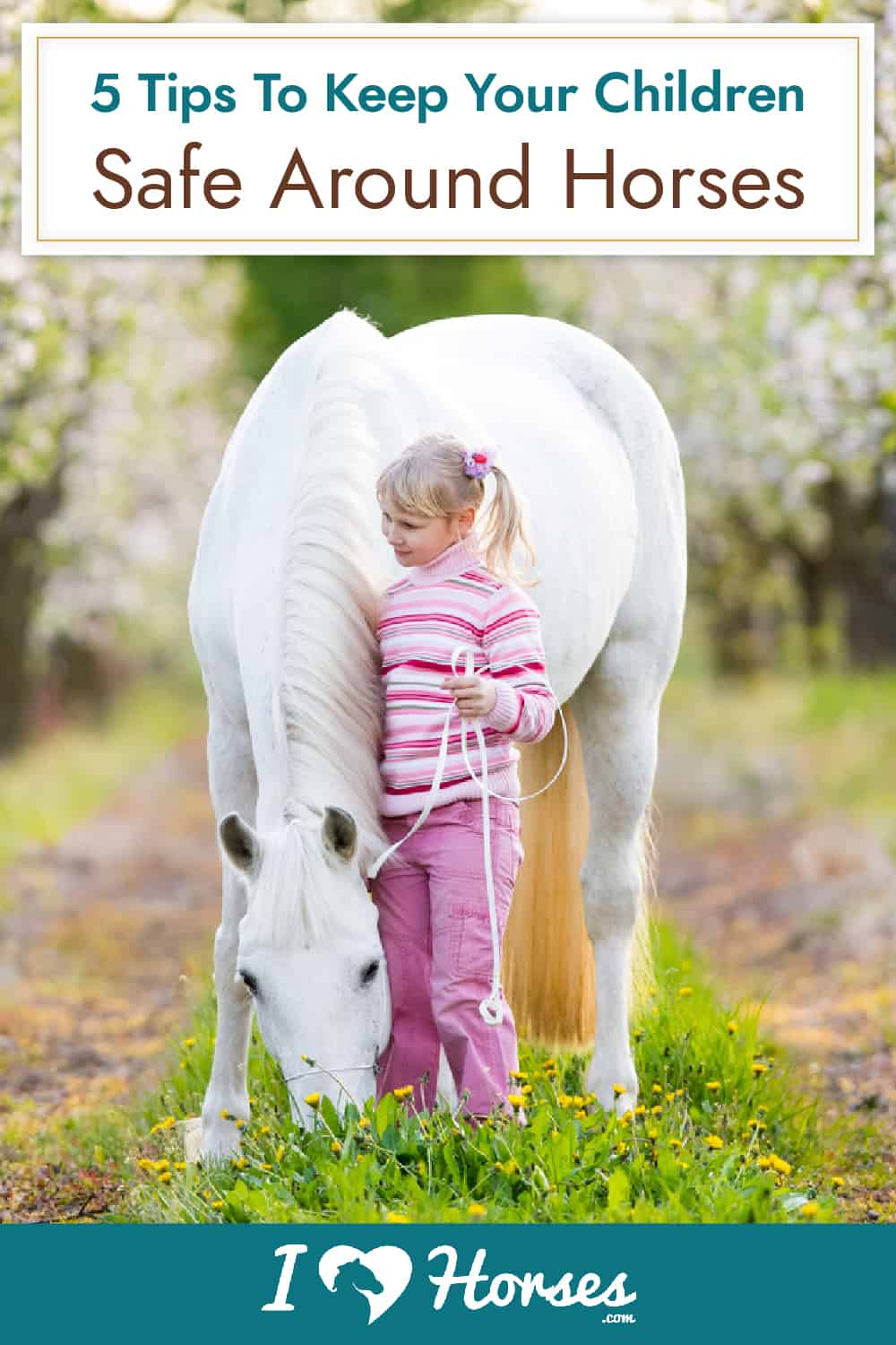Important Tips For Child Safety Around Horses
