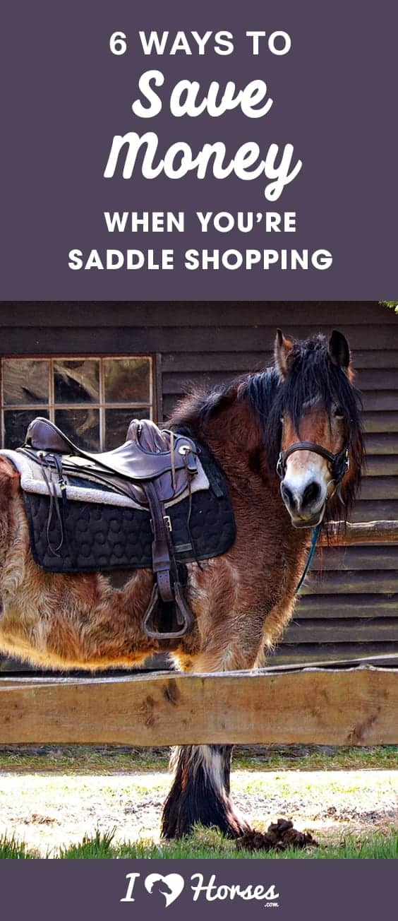 saddle shopping