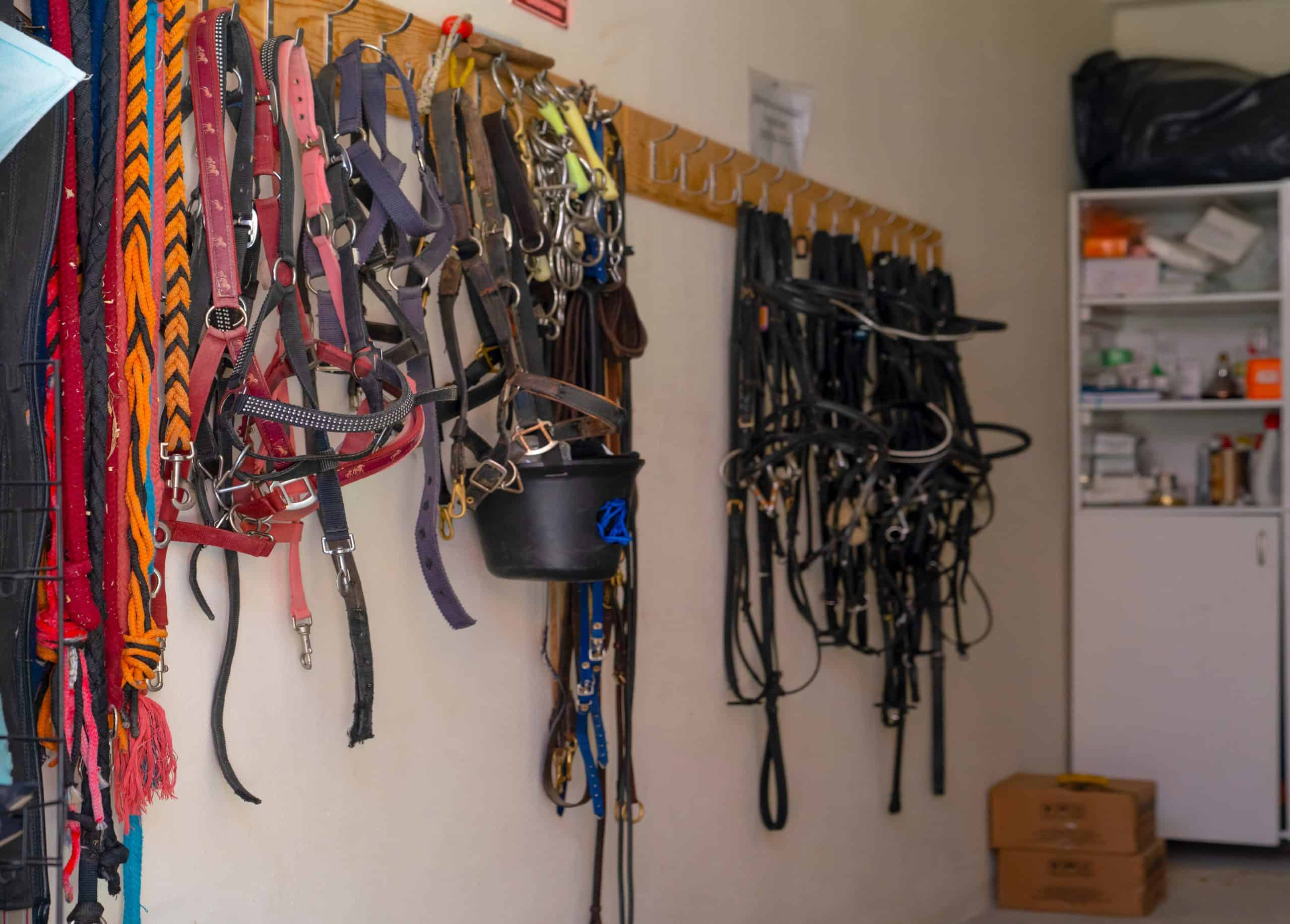 The tack room just near horse barn