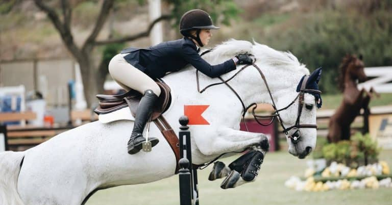 tips to fall from a horse