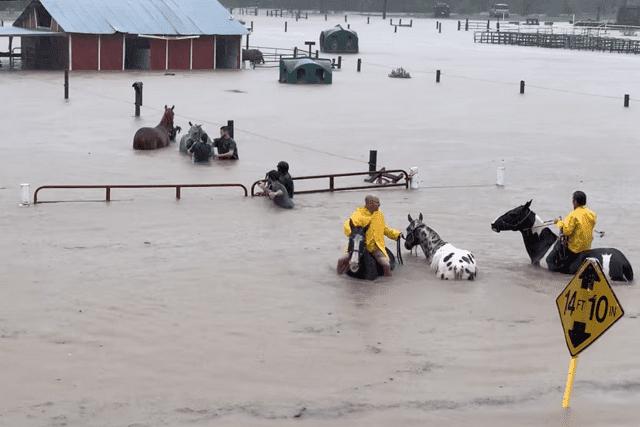 imelda floods