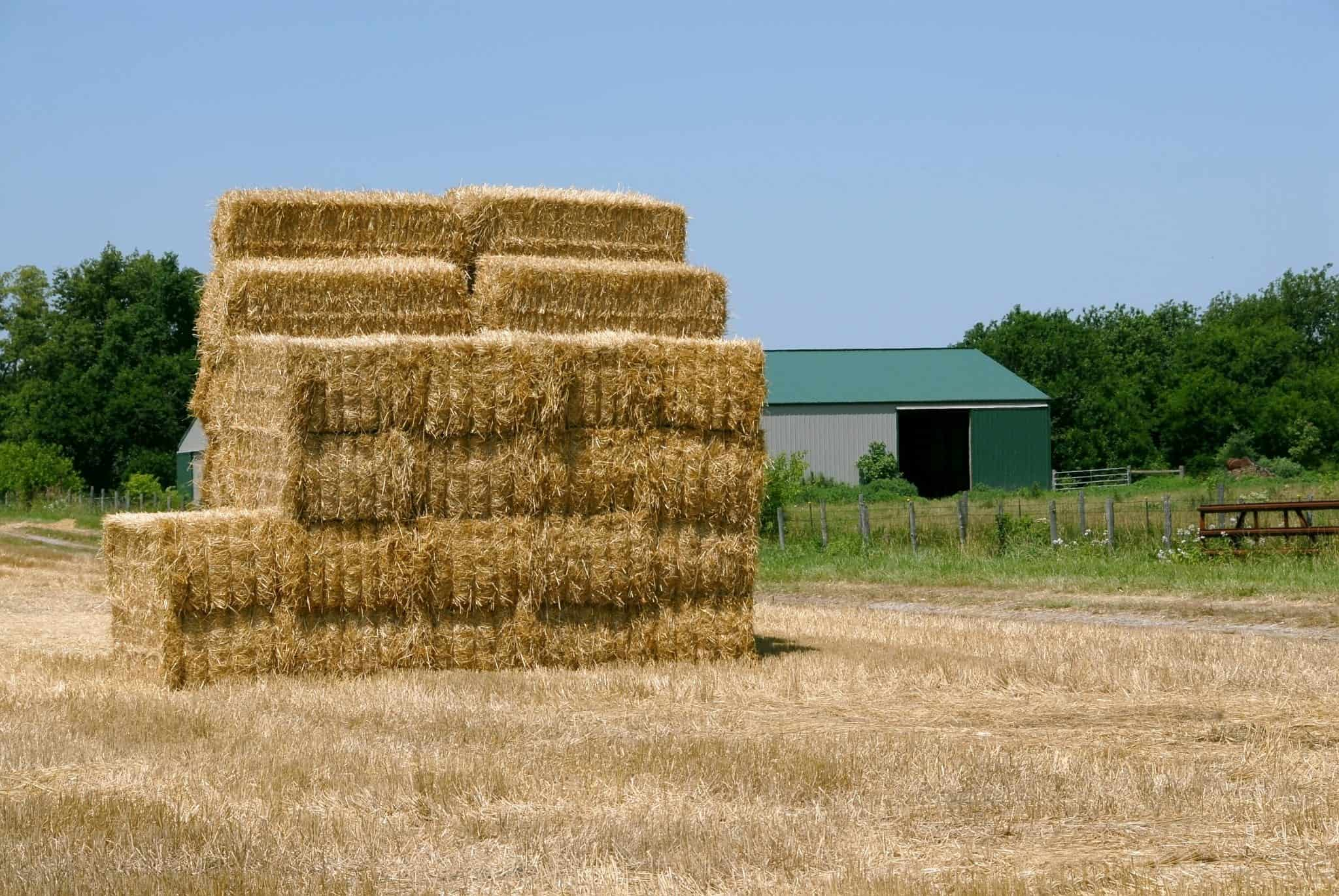 A stack of hay bales in the field of a farm in summer.