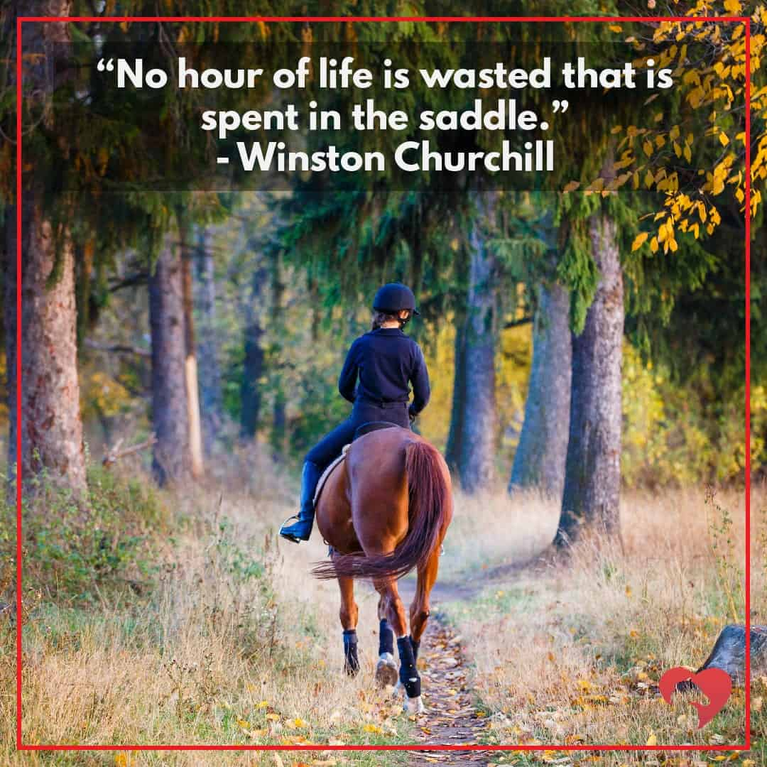 horse quotes no hour of life churchill