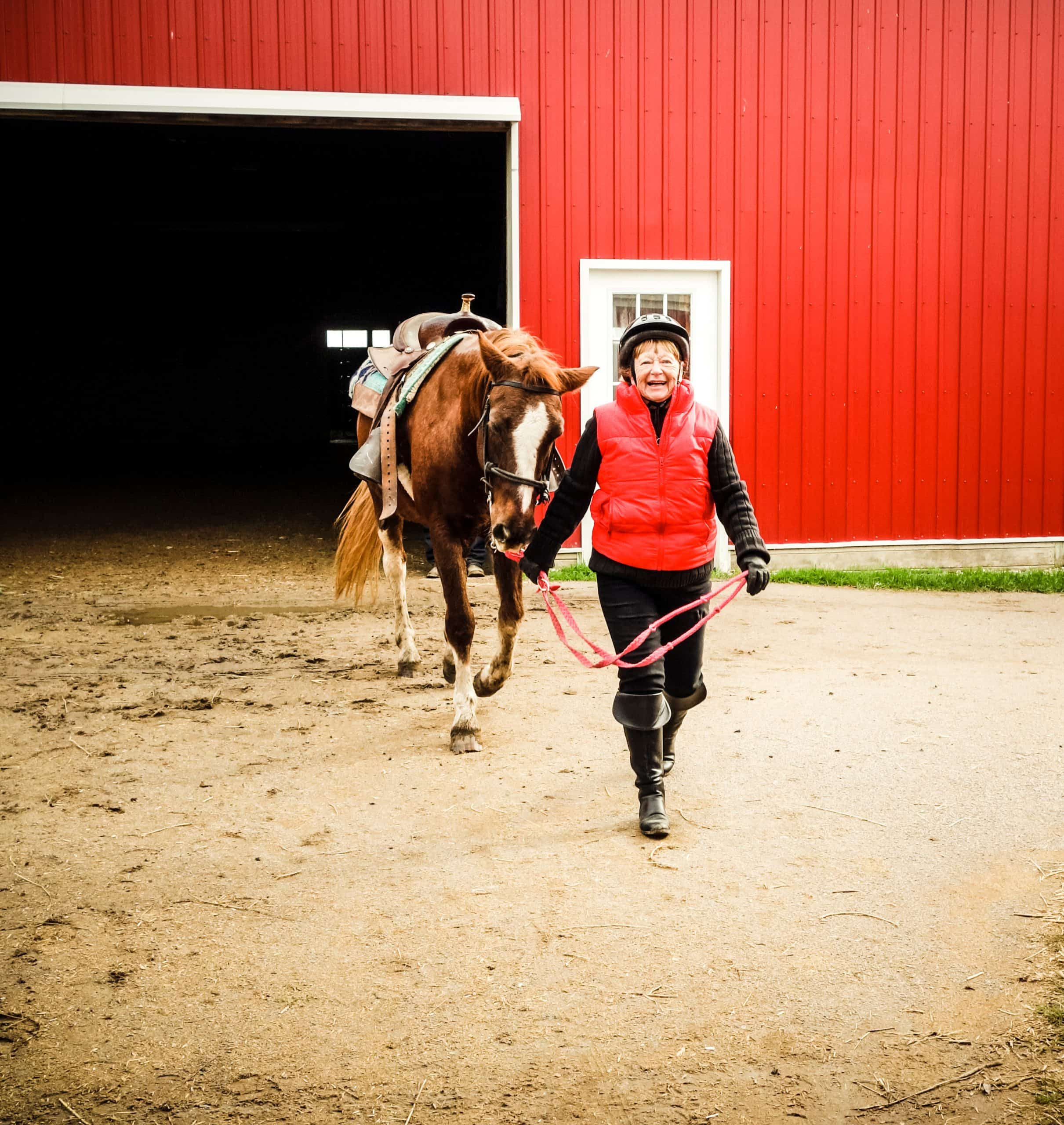 Senior citizen white woman in her 70's very pleased smiling as she is walking her horse from a  building with a large doorway.  She is wearing a red vest and protective riding gear and is holding the reins as she leads the horse from a red barn.  She is facing the camera with a big smile. There is a large dirt area in forefront for copy space.