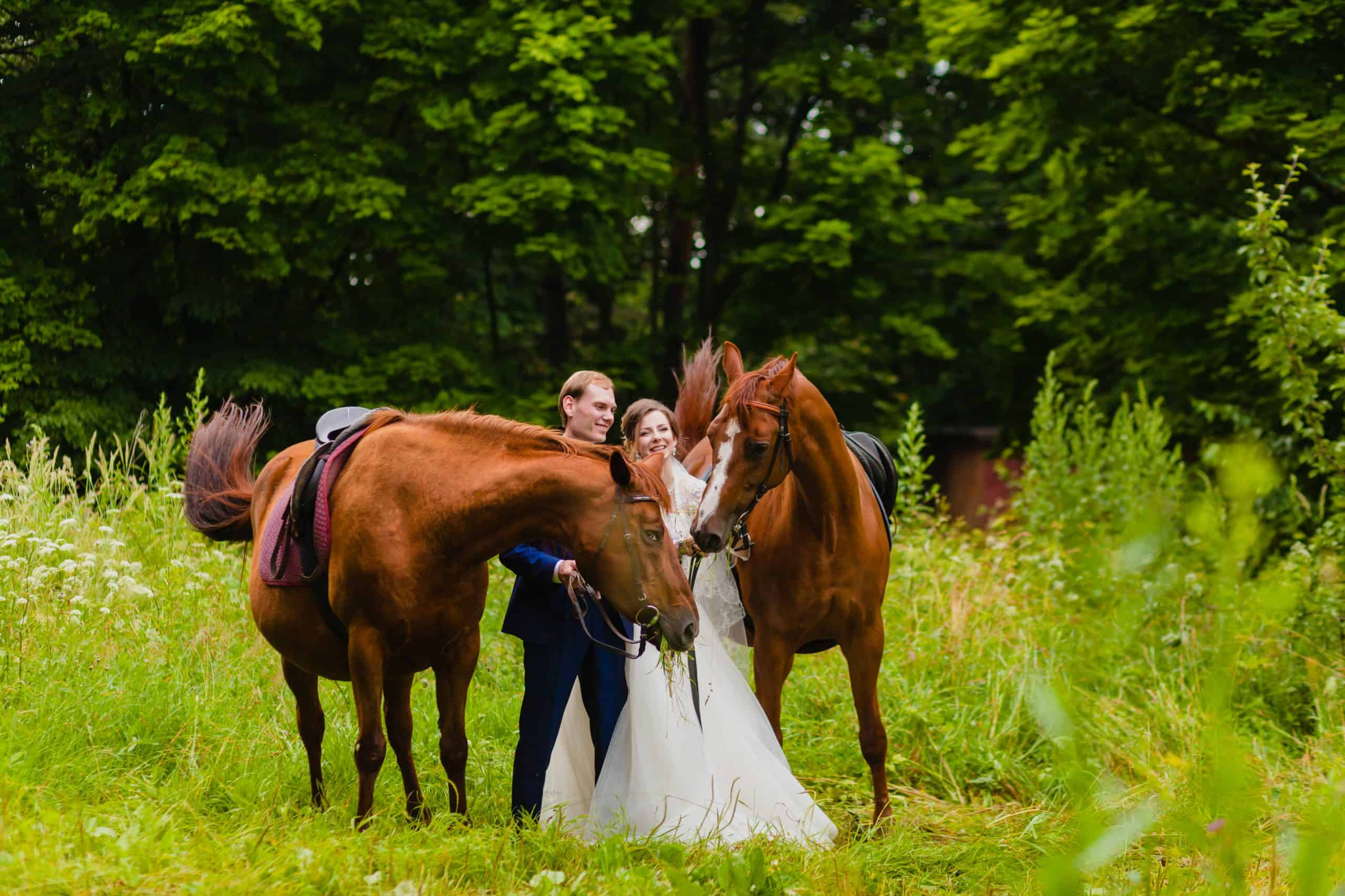 Beautiful newlyweds with two horses in the park on the background of a summer nature