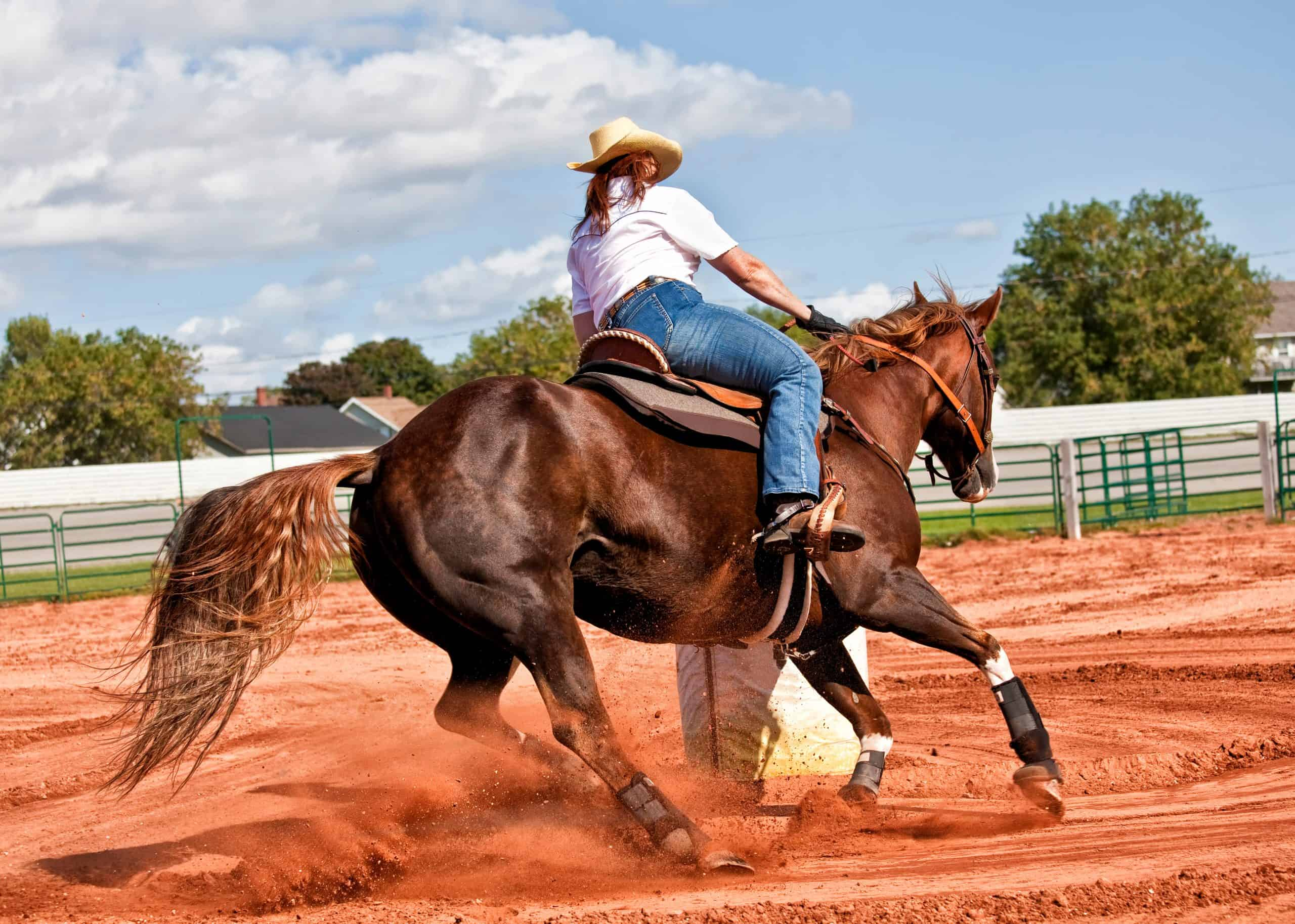 Western horse and rider competing in pole bending and barrel racing competition.