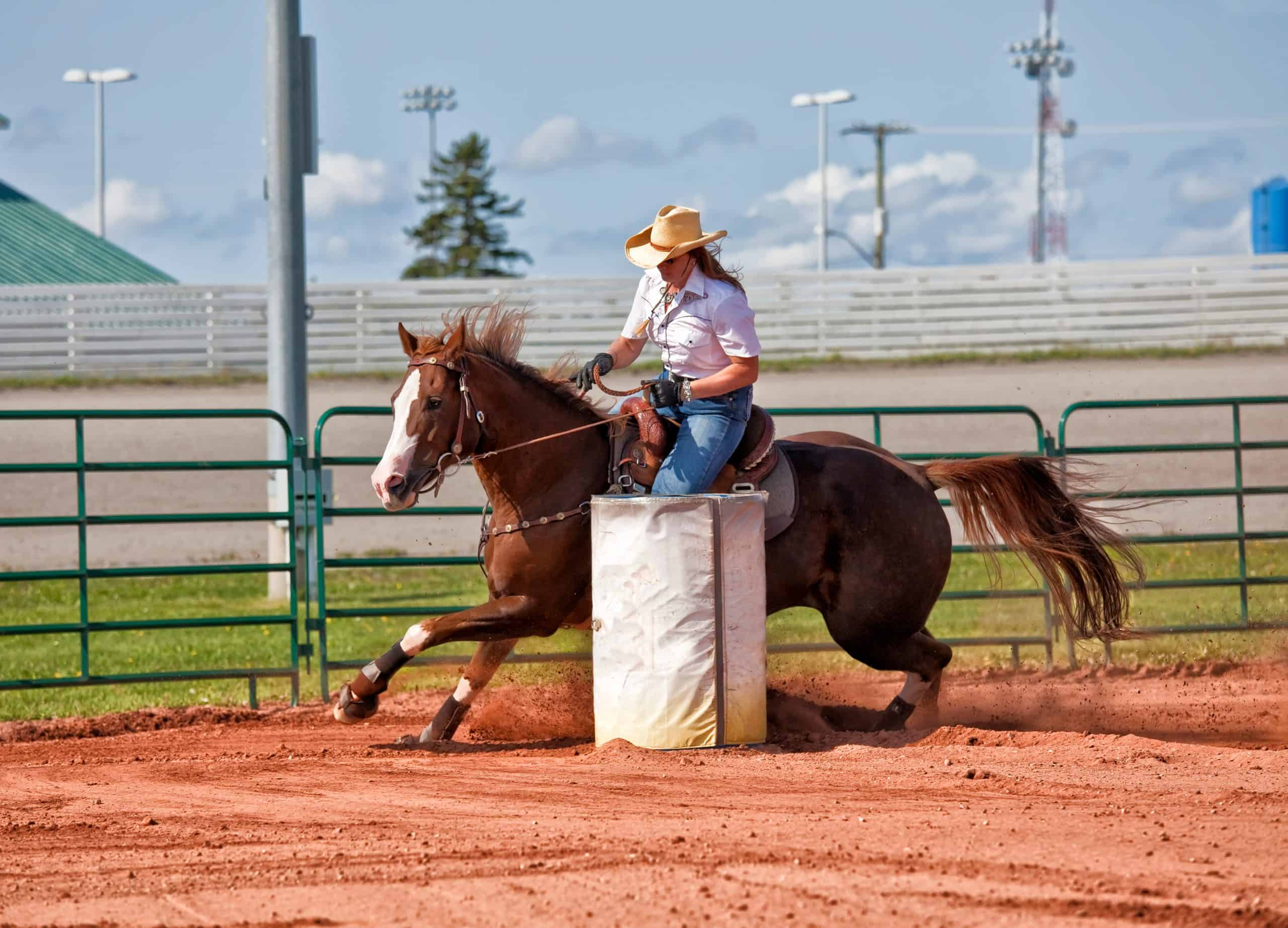 barrel racing for beginners woman riding a horse