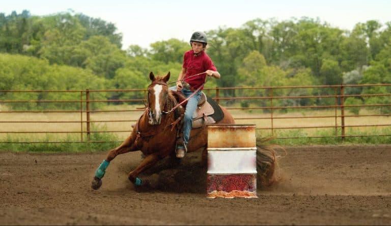 barrel racing for beginners