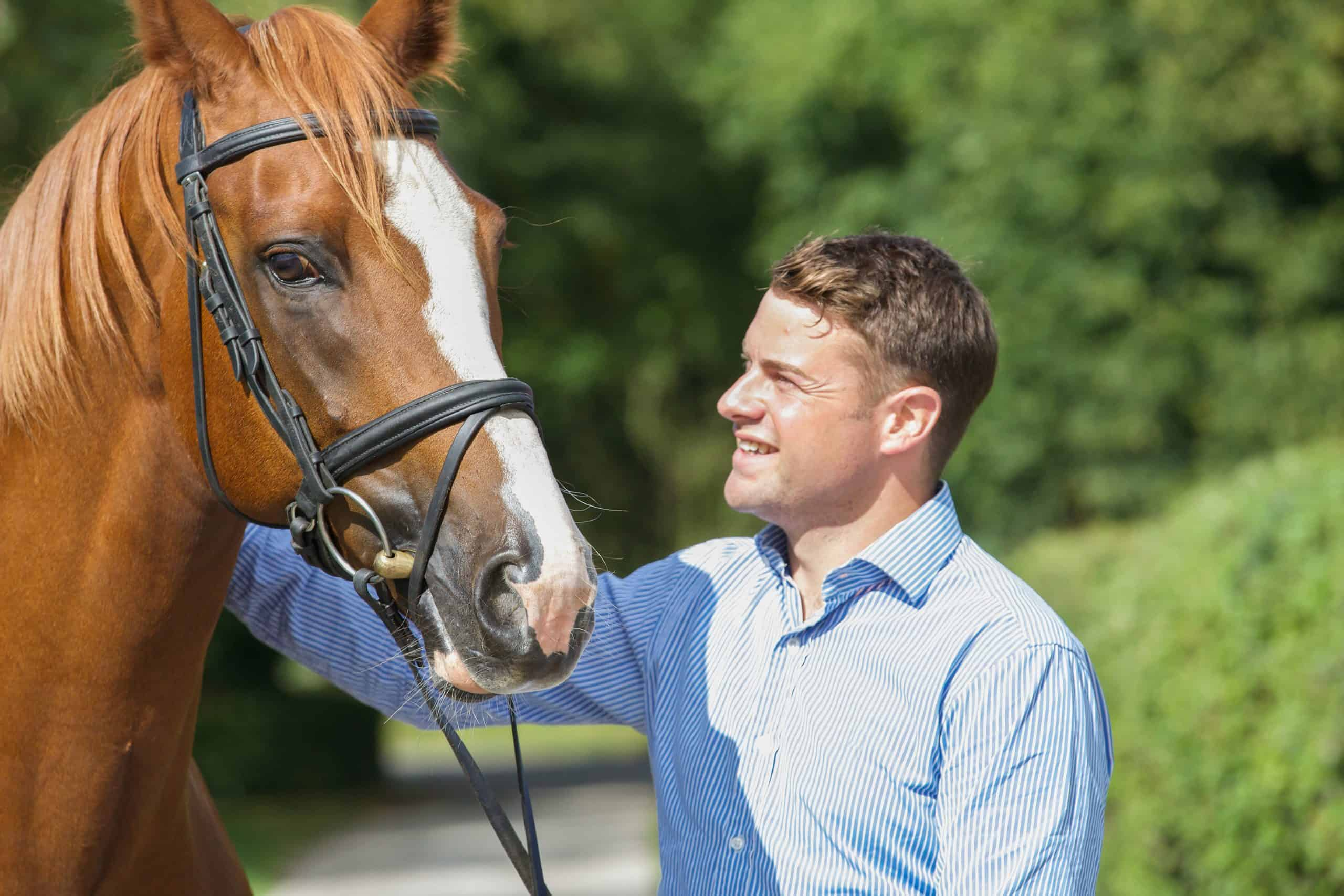 Horse owner tending to stallion relationship between horse and owner