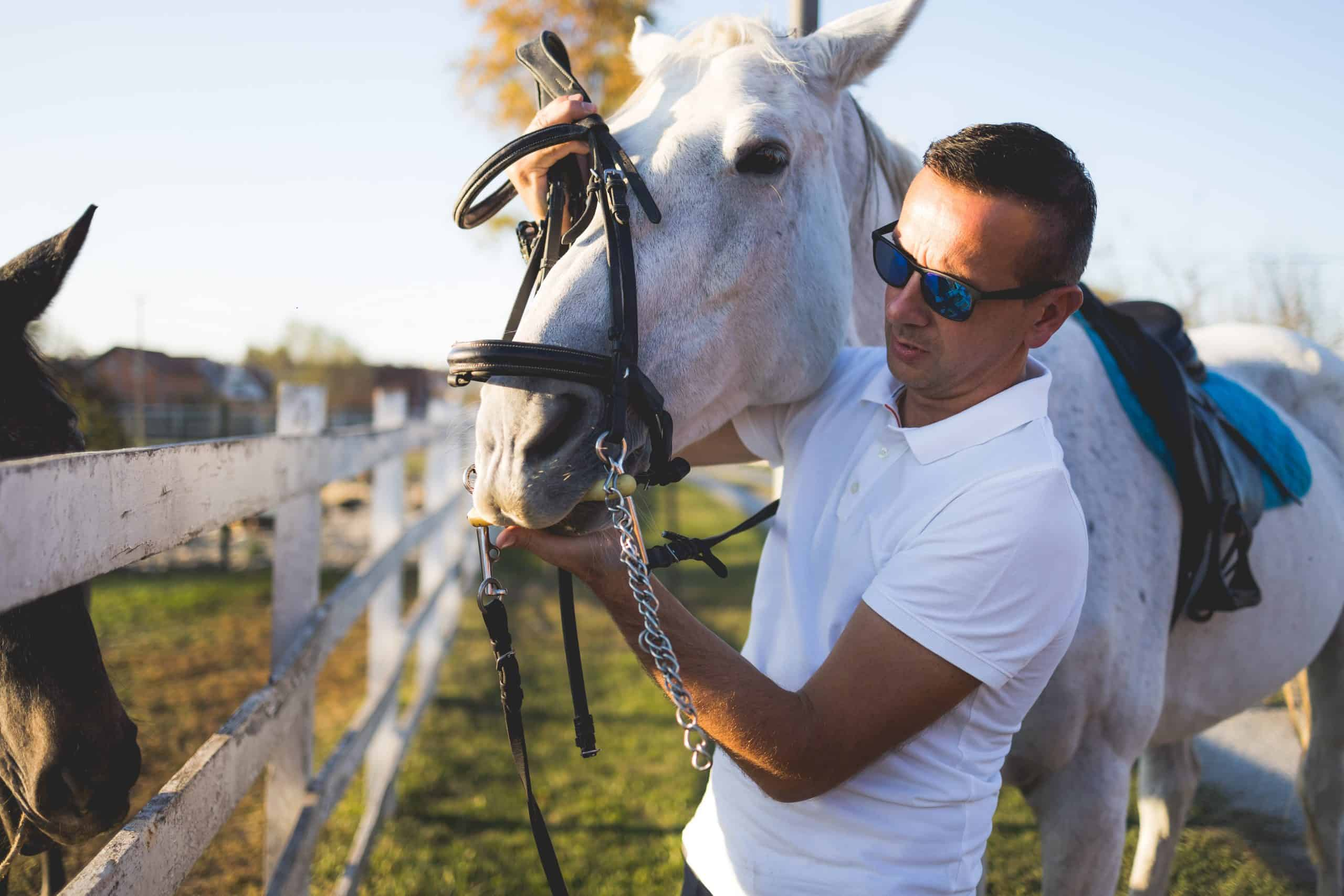 The owner and his white horse are preparing to ride