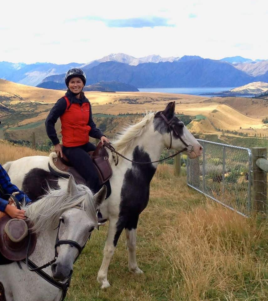 Shania Twain's Horse