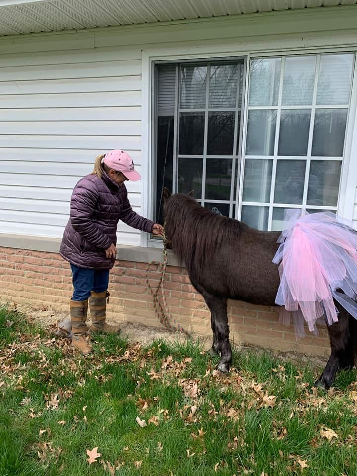 princess the pony
