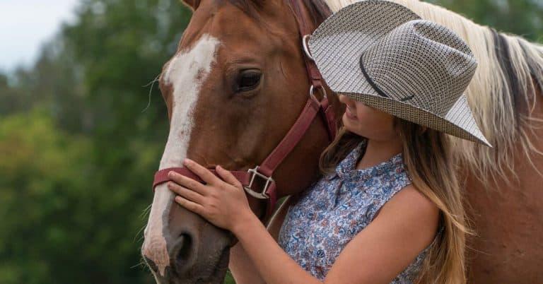 horse camp movie